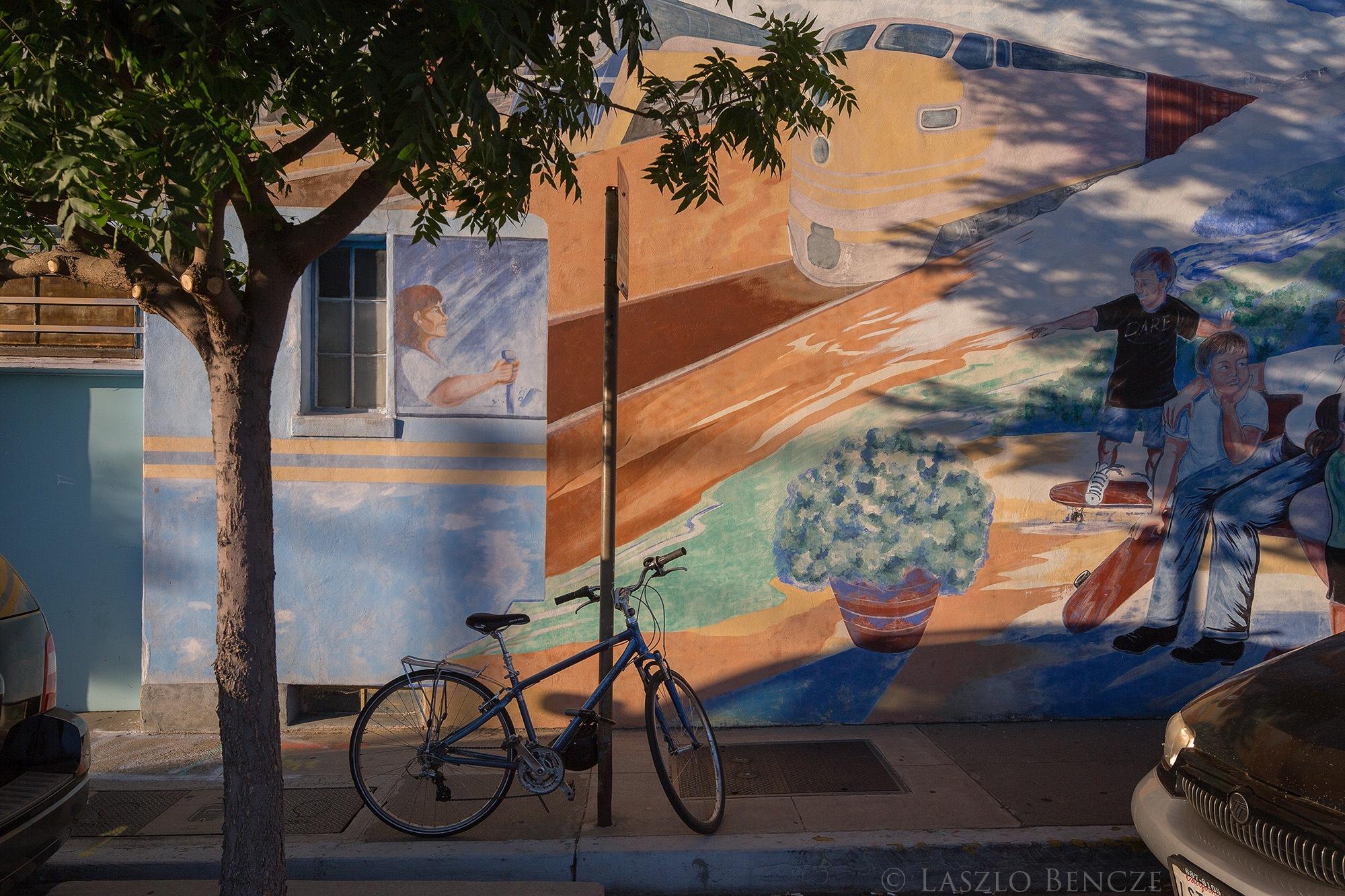 Roseville Wall Art by Laszlo Bencze