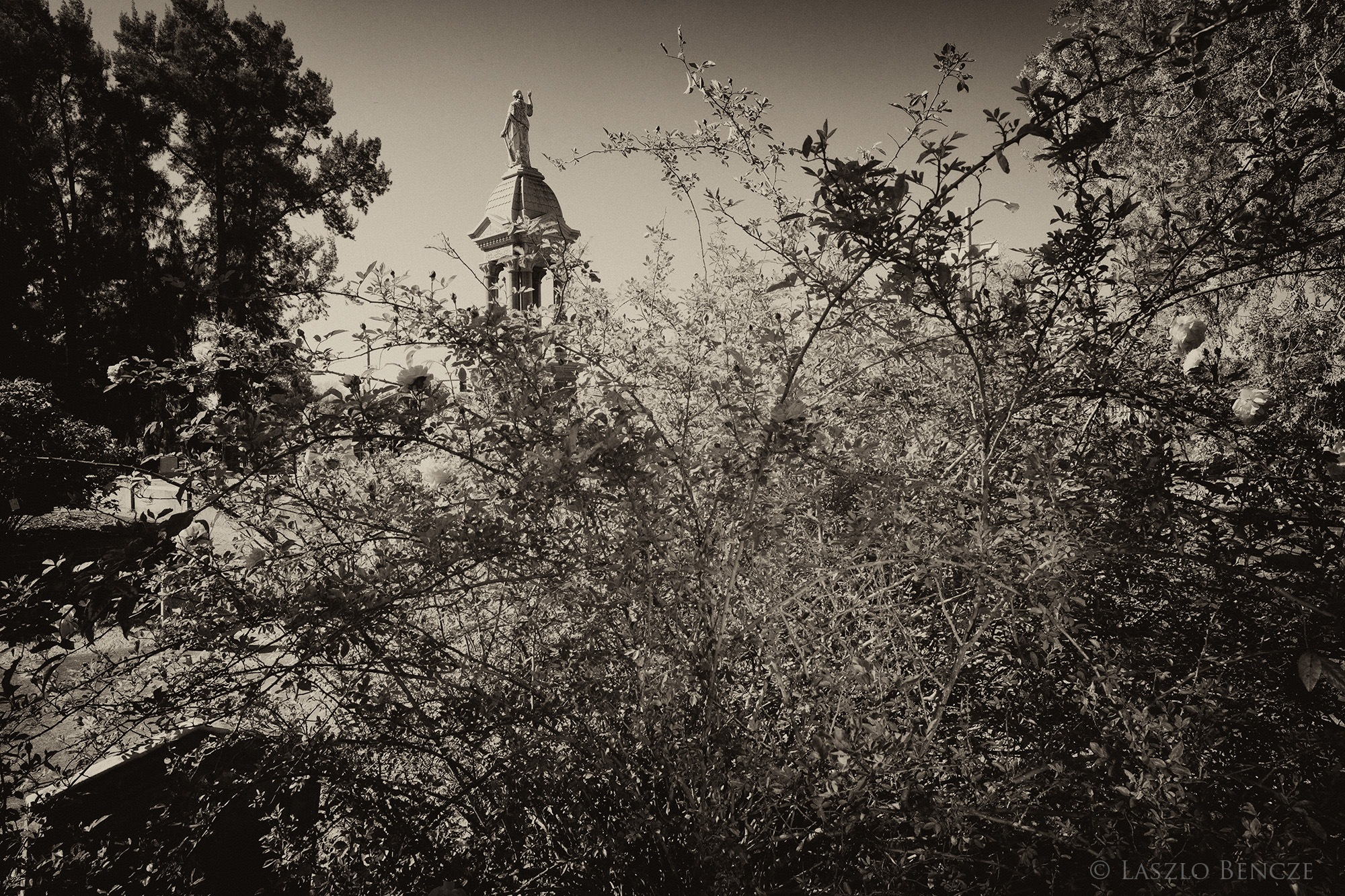 Cemetery #22, Cupola by Laszlo Bencze
