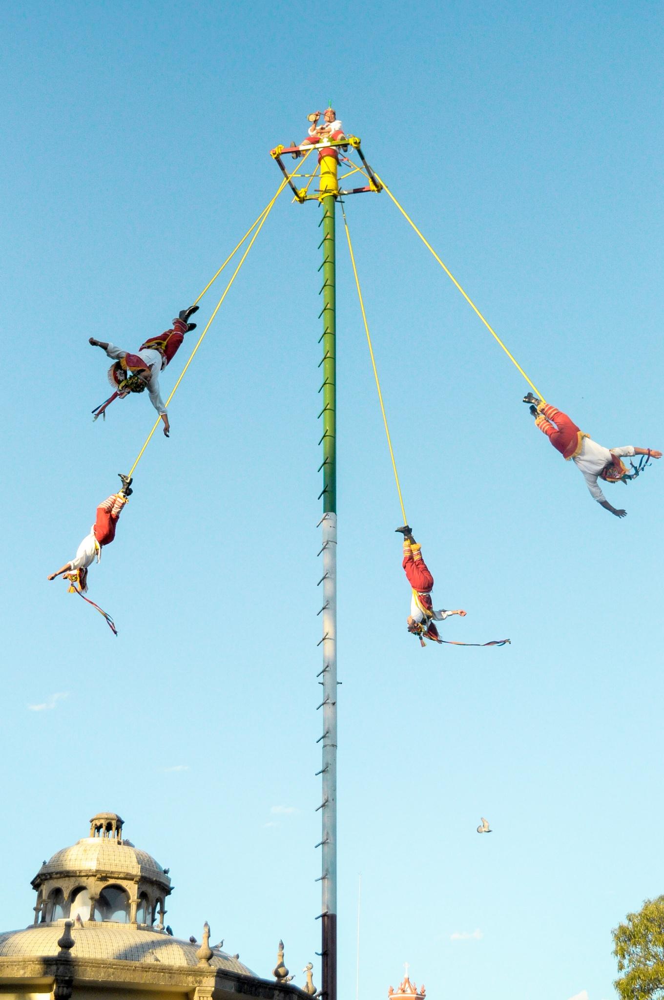 Tradiciones voladoras by millypedia