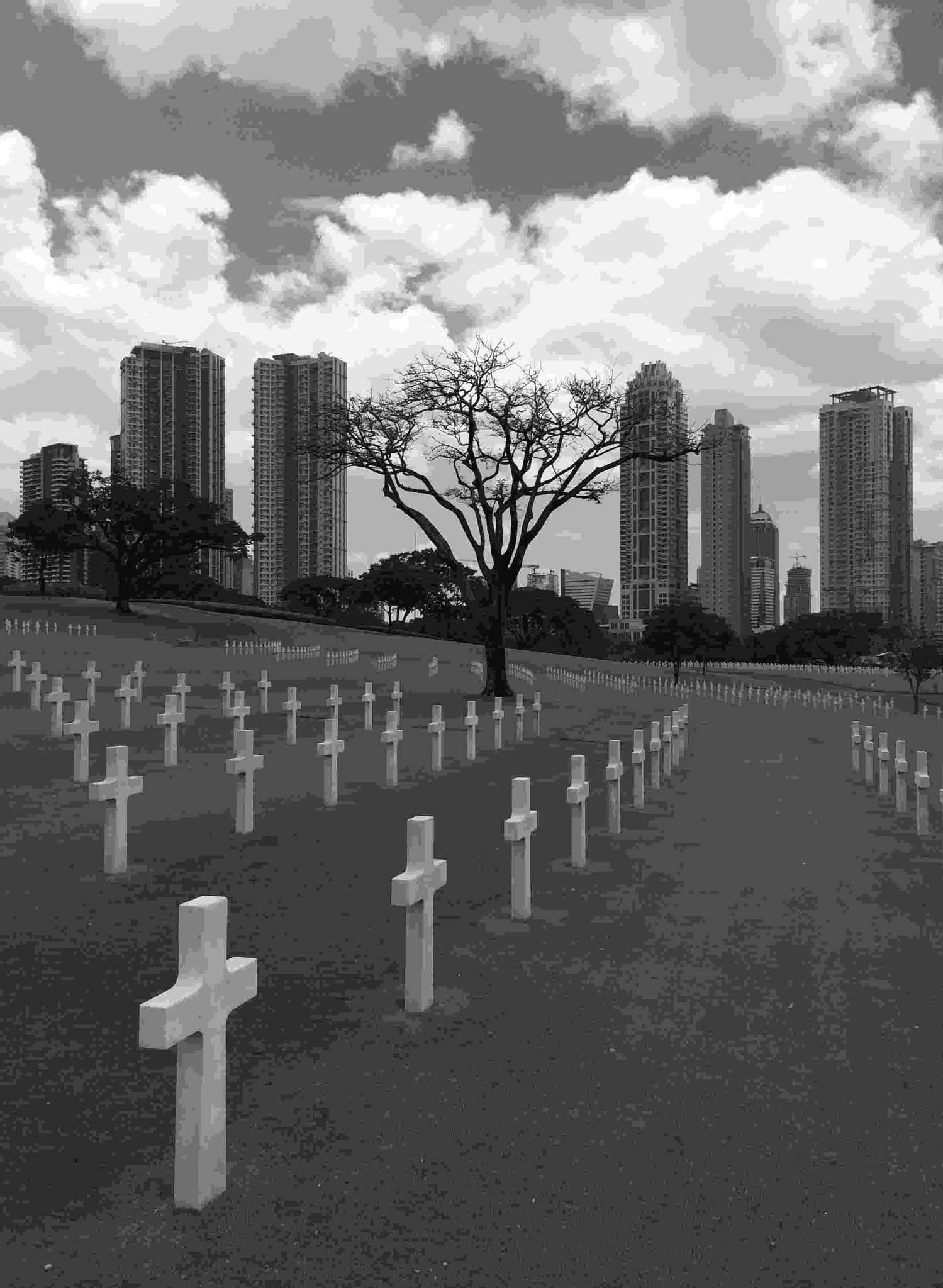 Photo in People #manila #cemetry #worldwarii