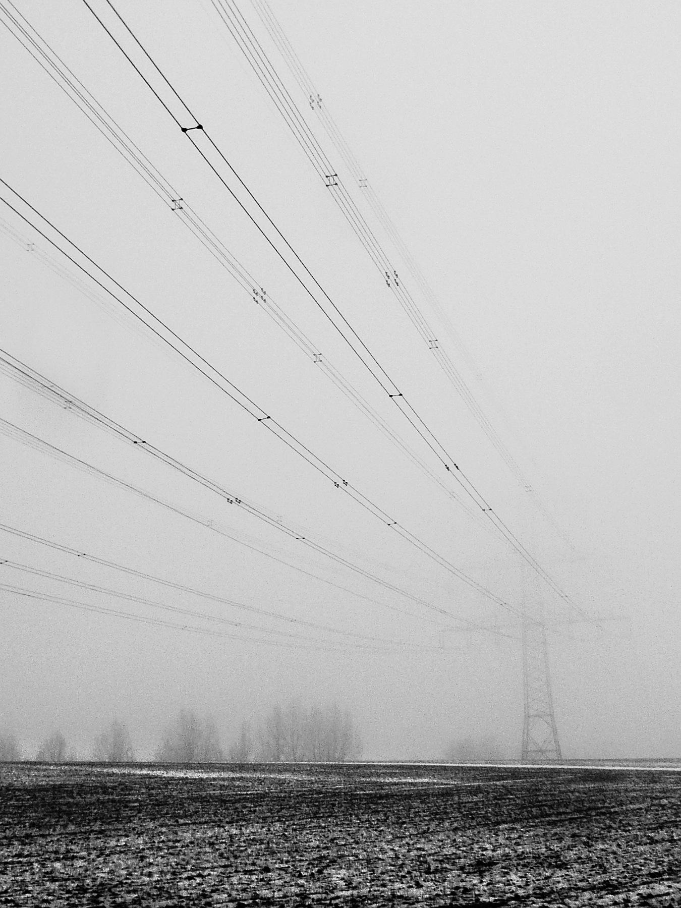 Fog by Gernot Schwarz