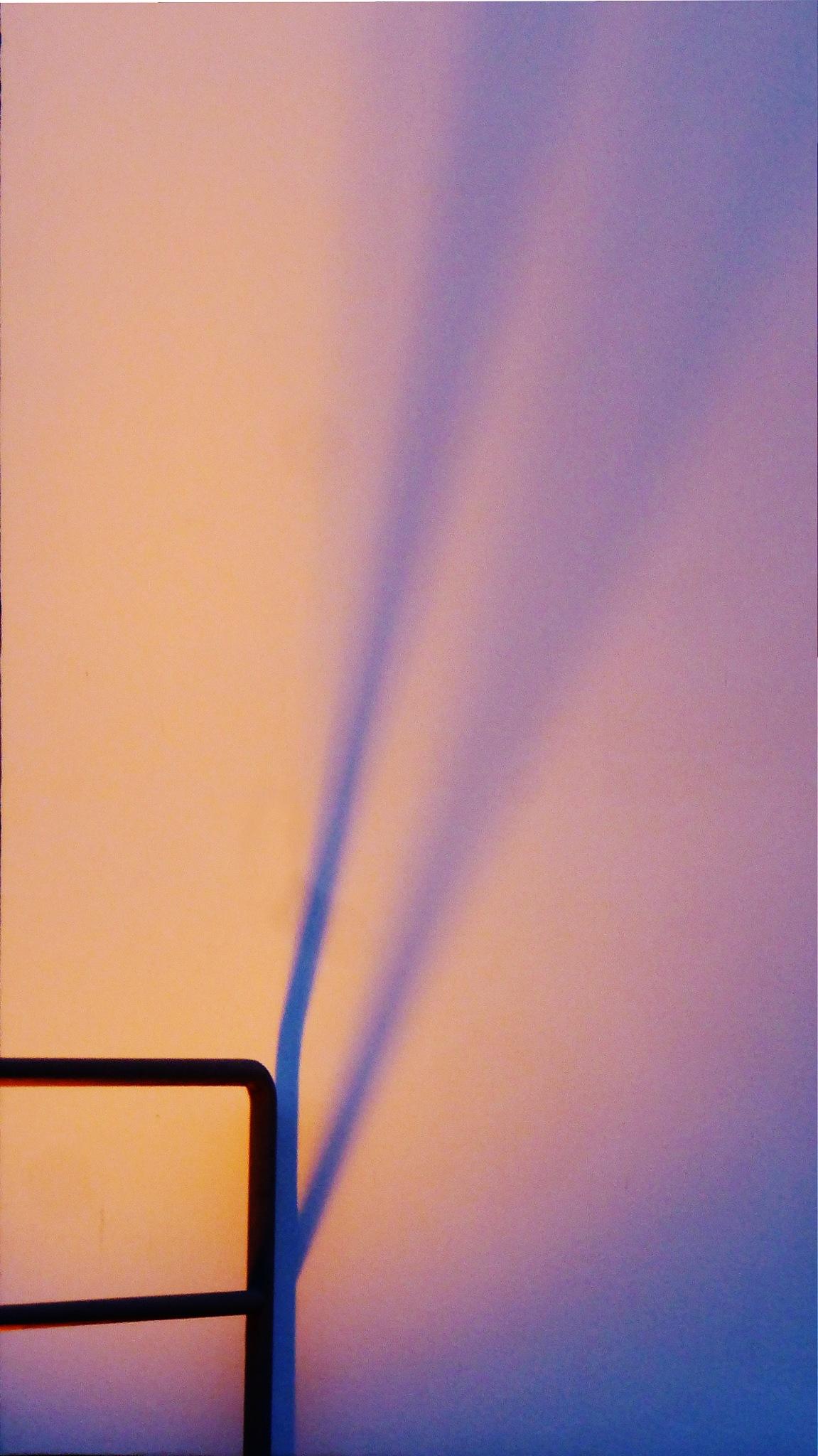 Shadow by Gernot Schwarz