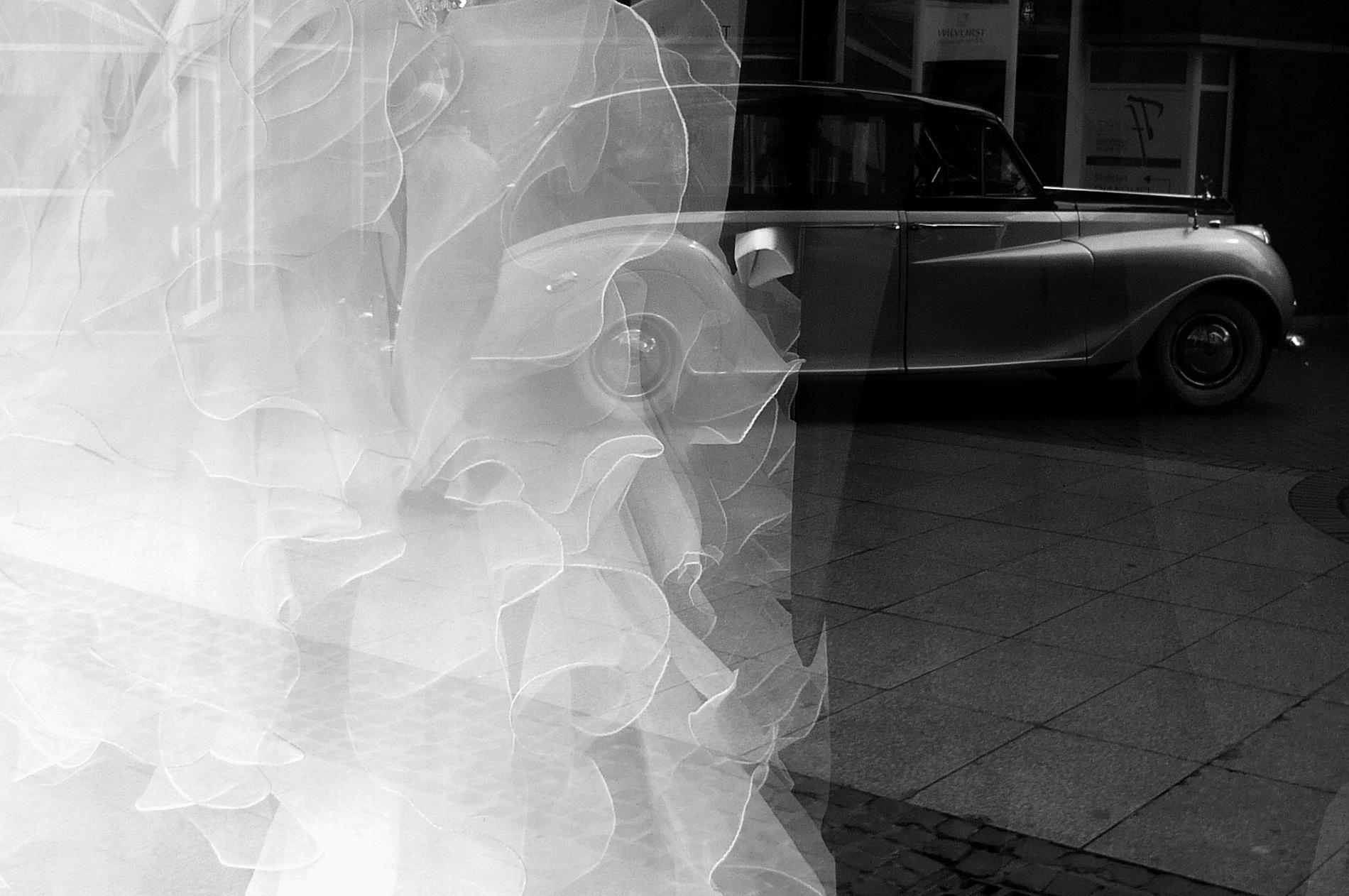 Reflection by Gernot Schwarz