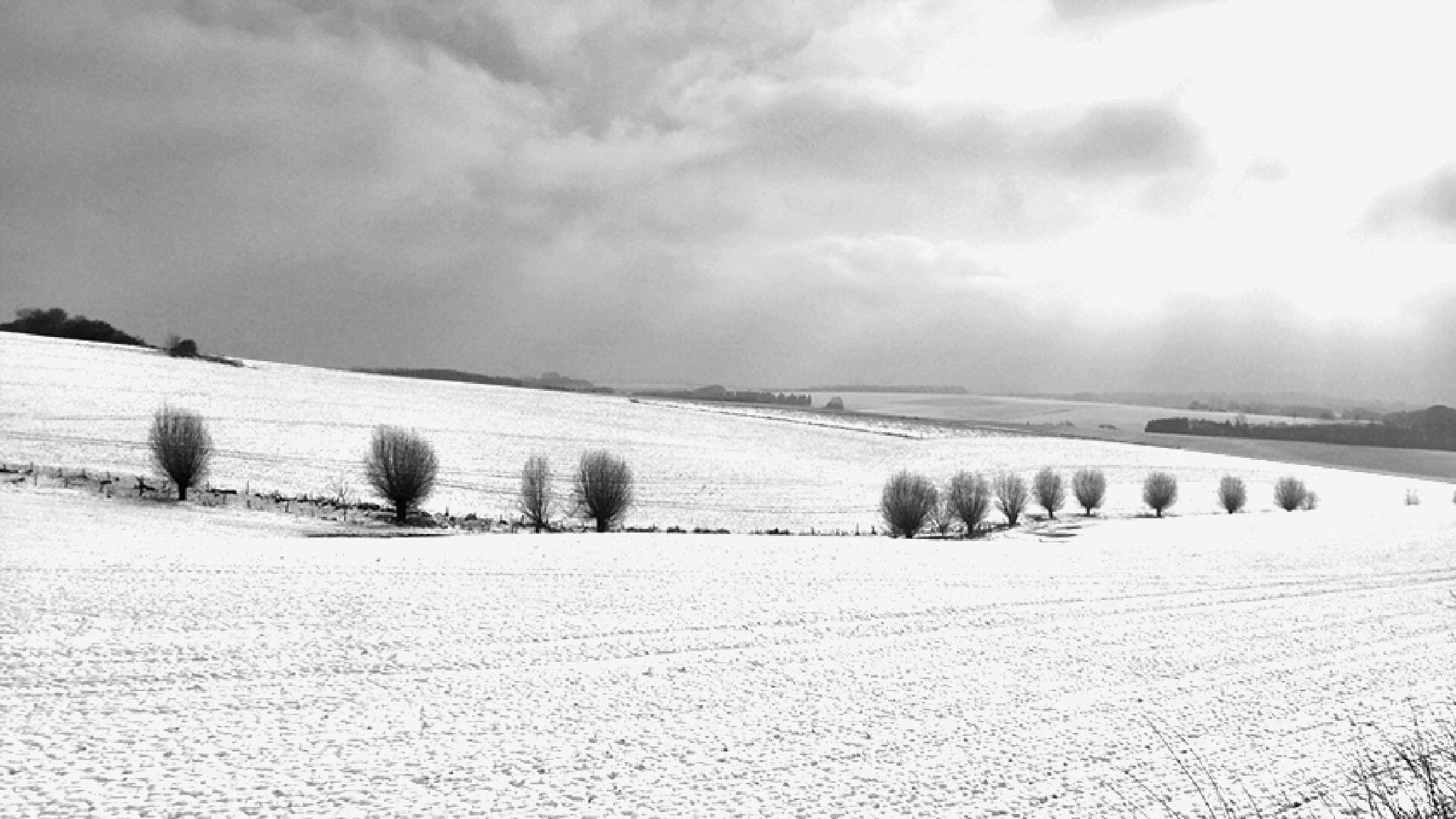 Winter landscape #4 by Gernot Schwarz
