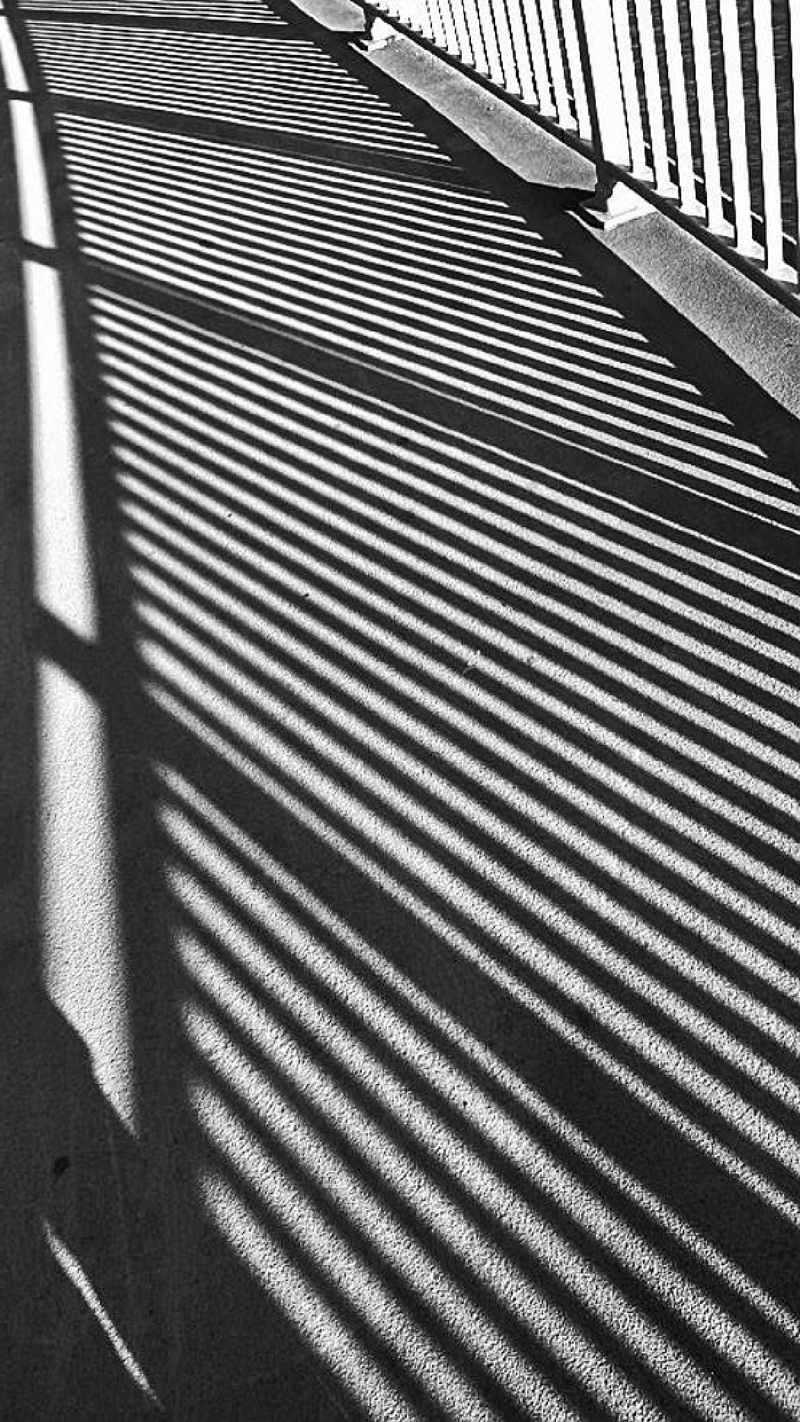 Shadow #k7 by Gernot Schwarz