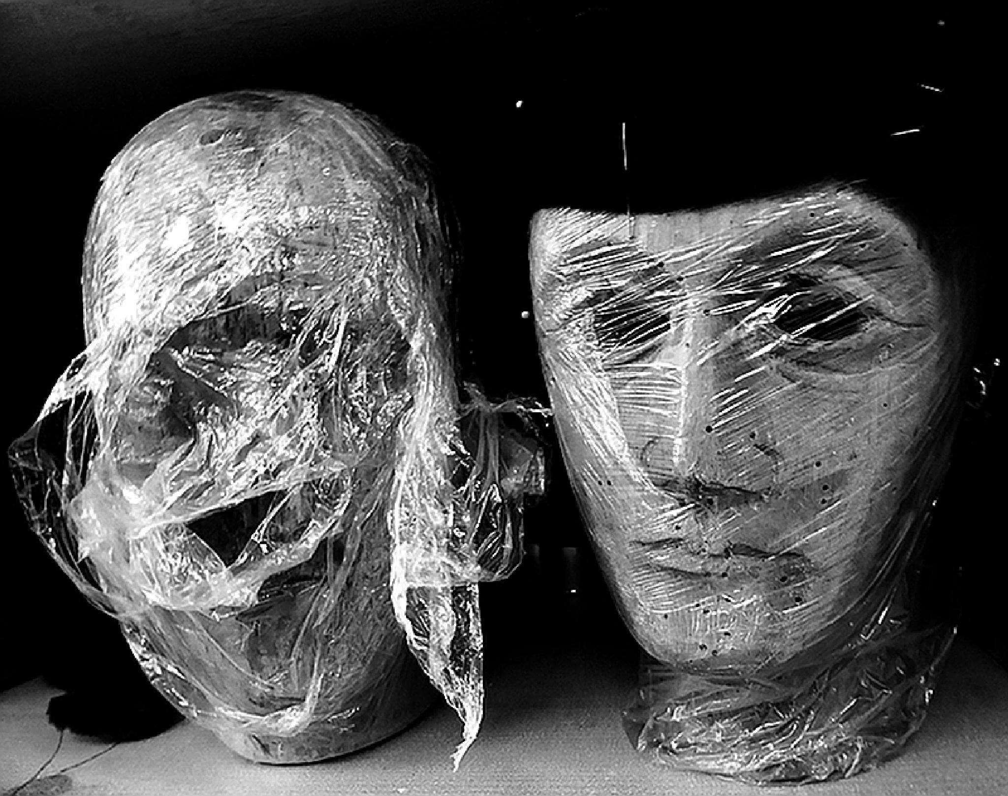 Heads in foil by Gernot Schwarz