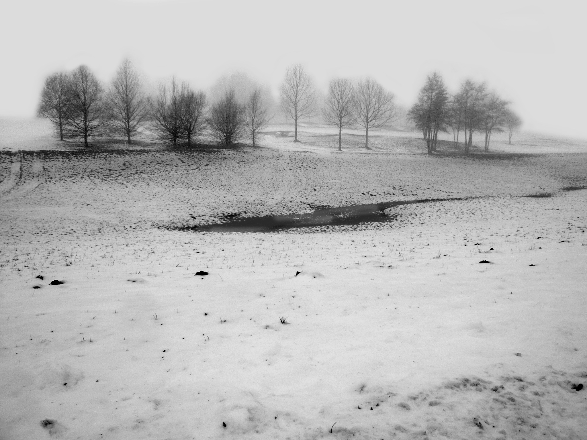 Winter landscape by Gernot Schwarz