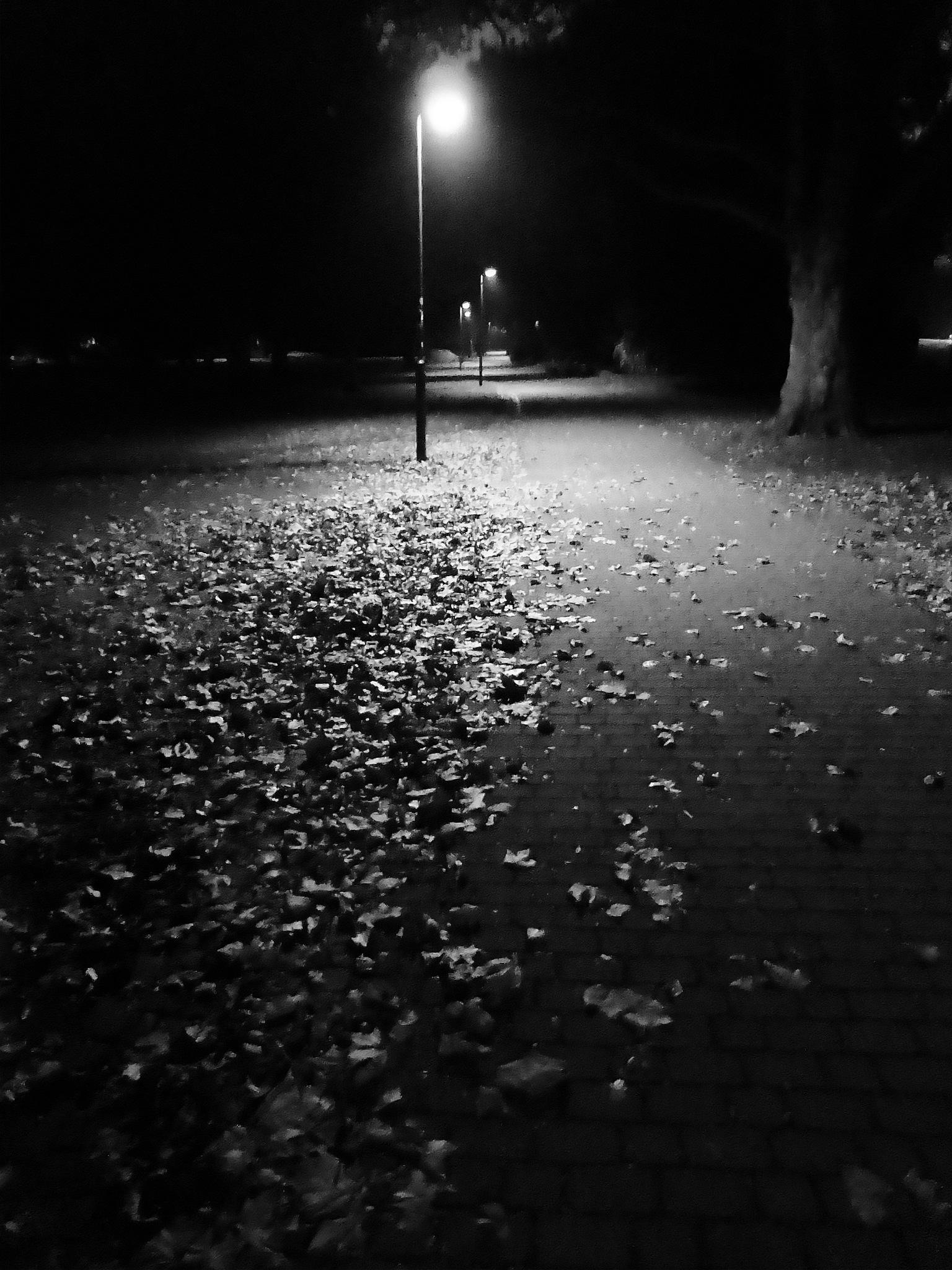 Autumn night by Gernot Schwarz