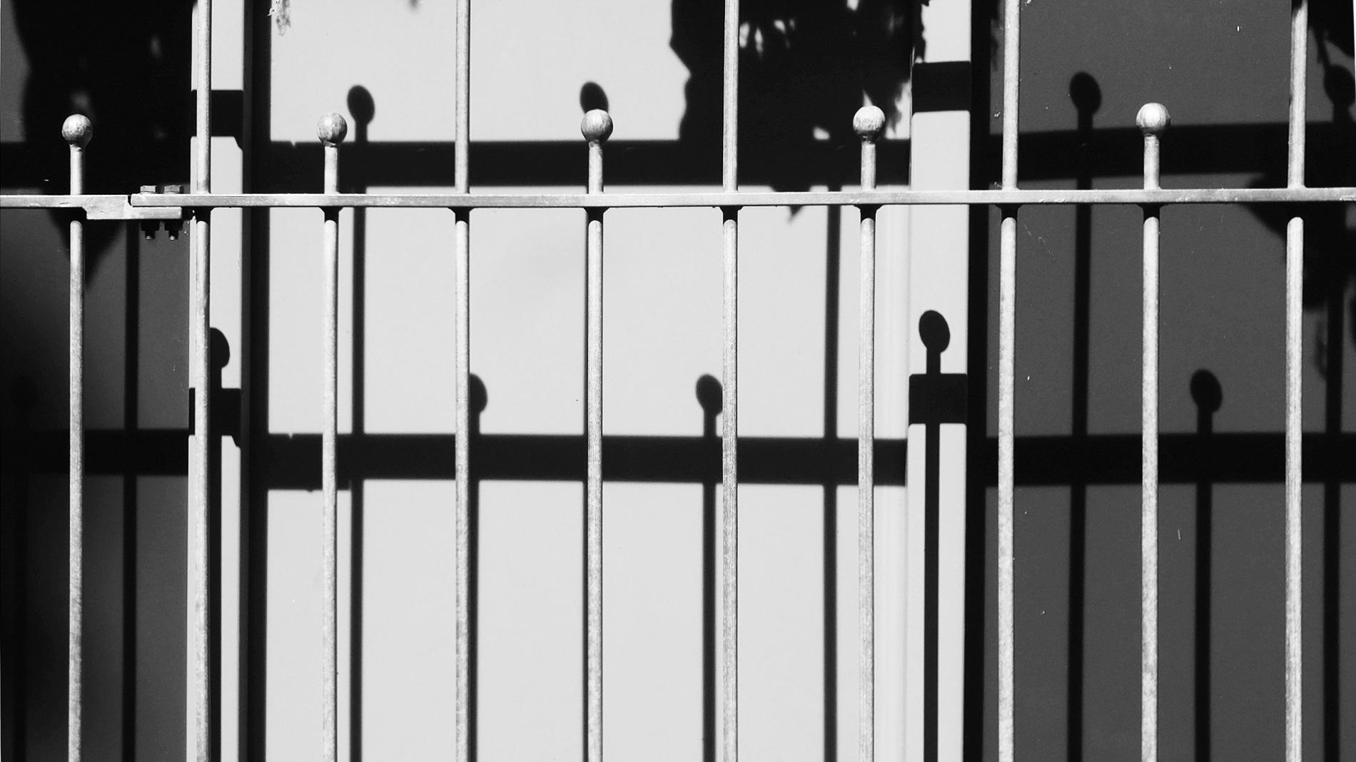 Shadow play by Gernot Schwarz