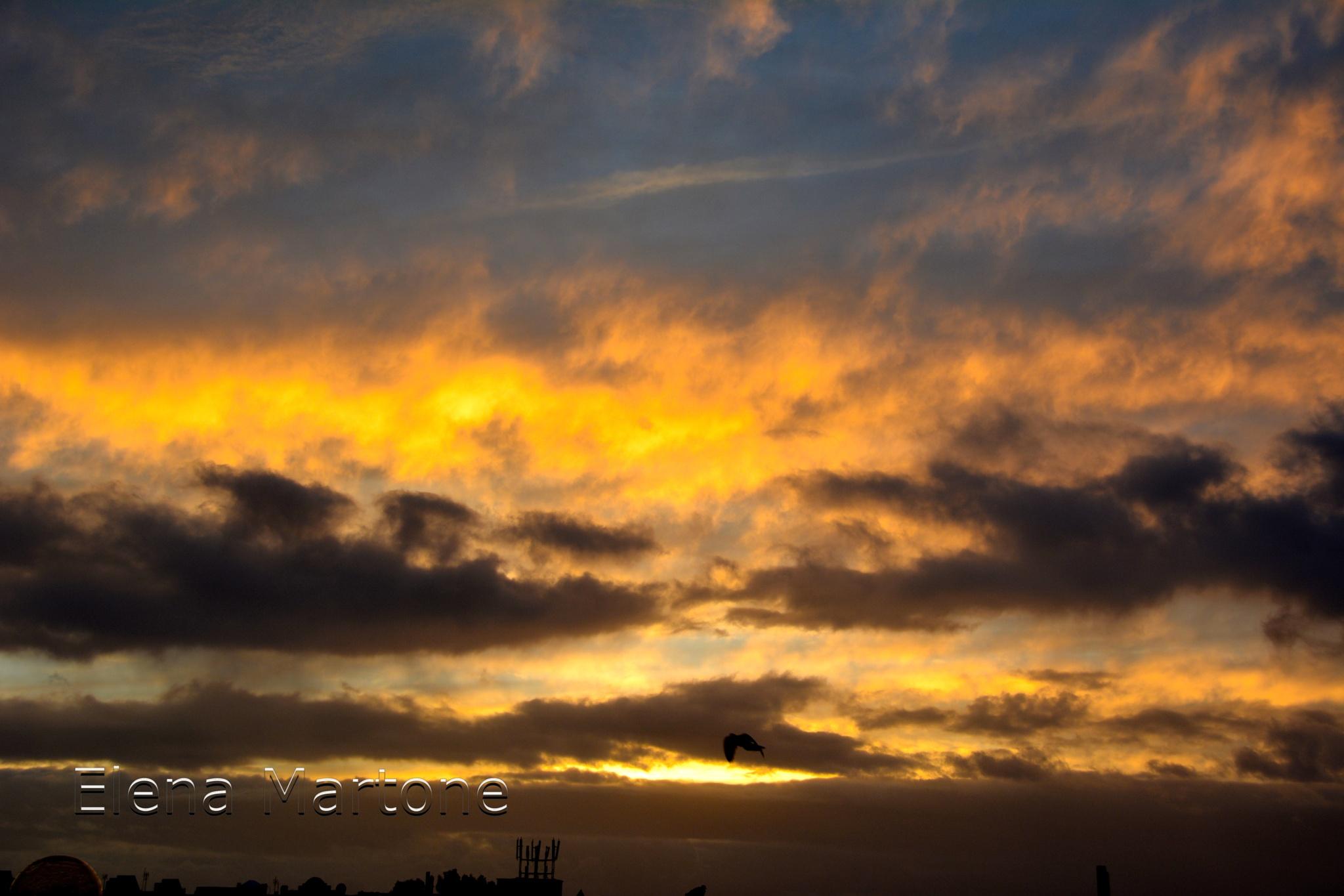 Il sorgere del sole by elenamartone