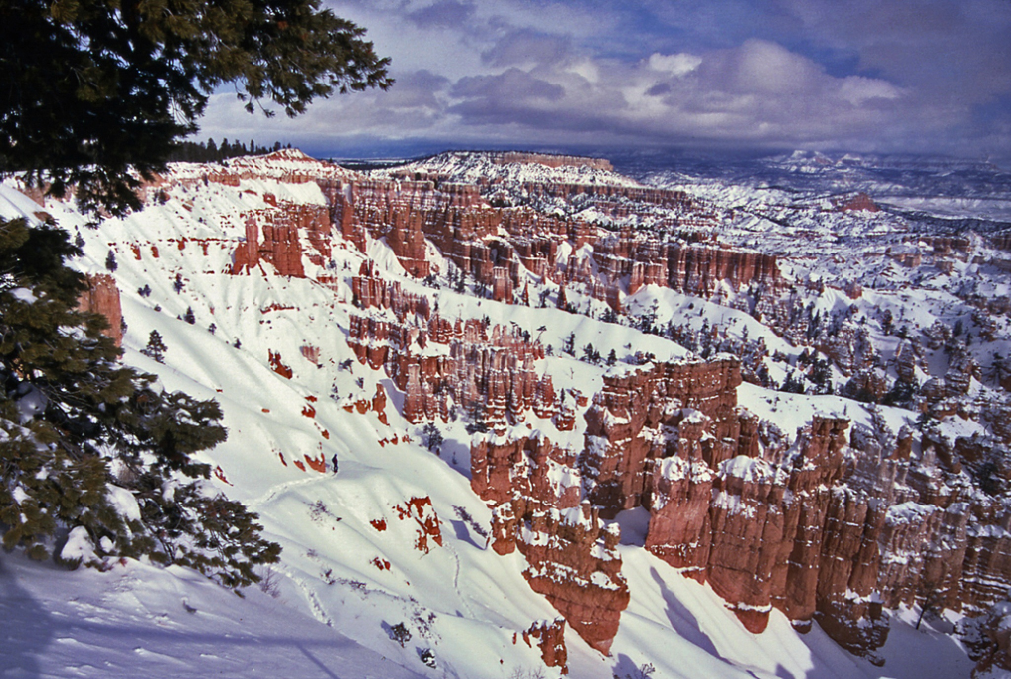 Bryce Canyon in Winter by Mark Teufel