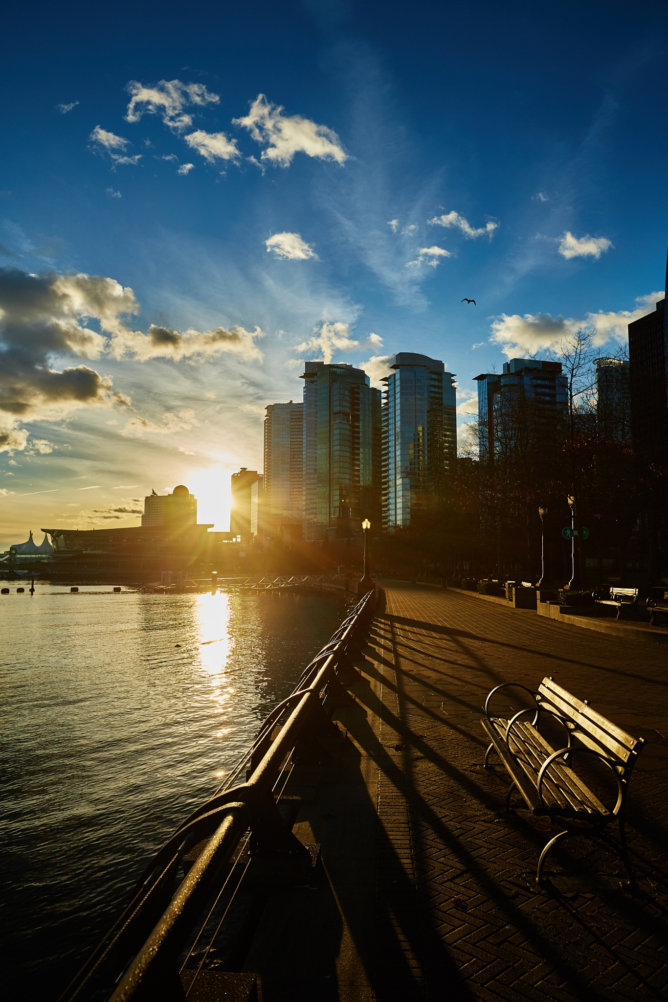 Coal Harbour by Greg Mullaly
