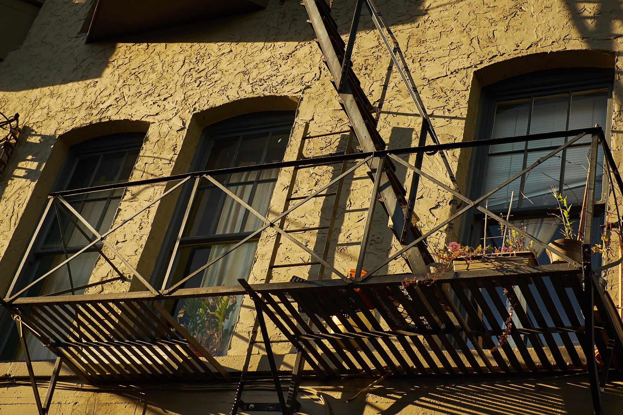 Fire escape by Greg Mullaly