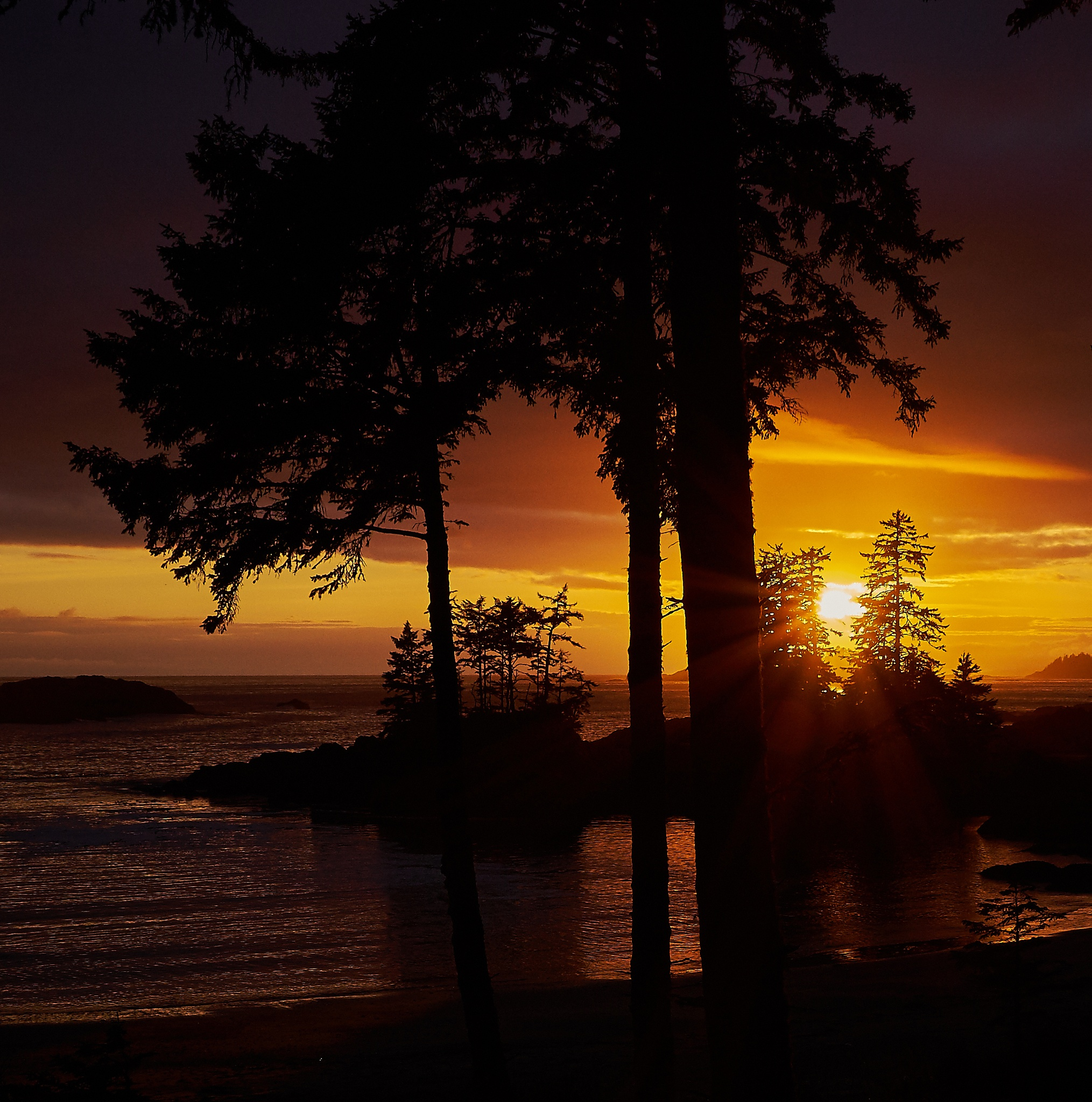 Ucluelet sunset by Greg Mullaly