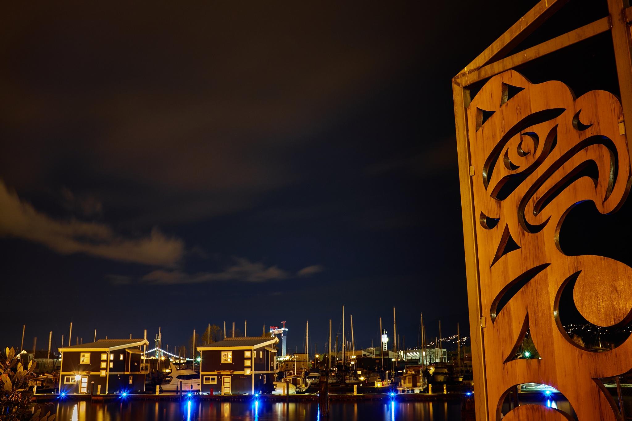 Marina at night by Greg Mullaly