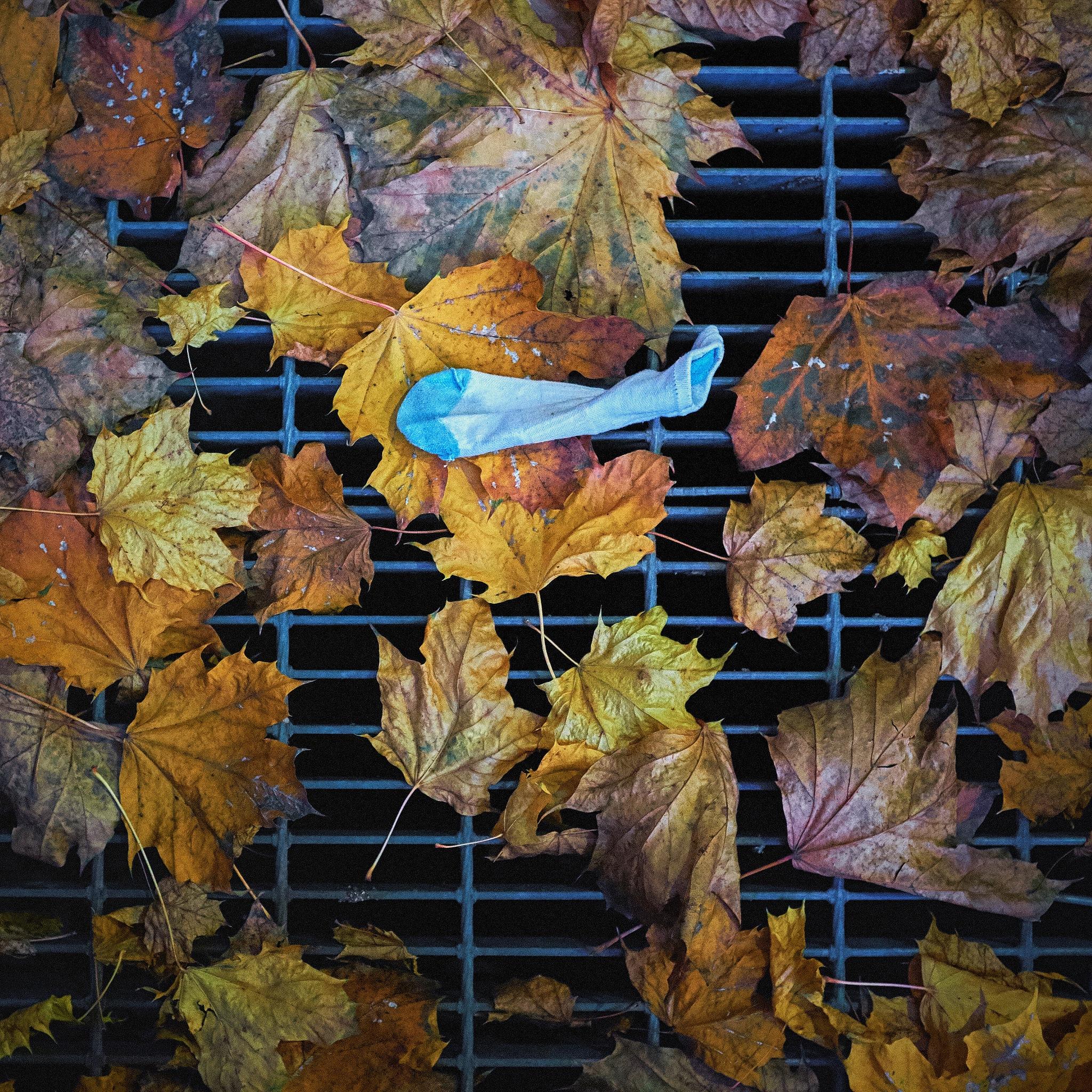 Sock by Greg Mullaly