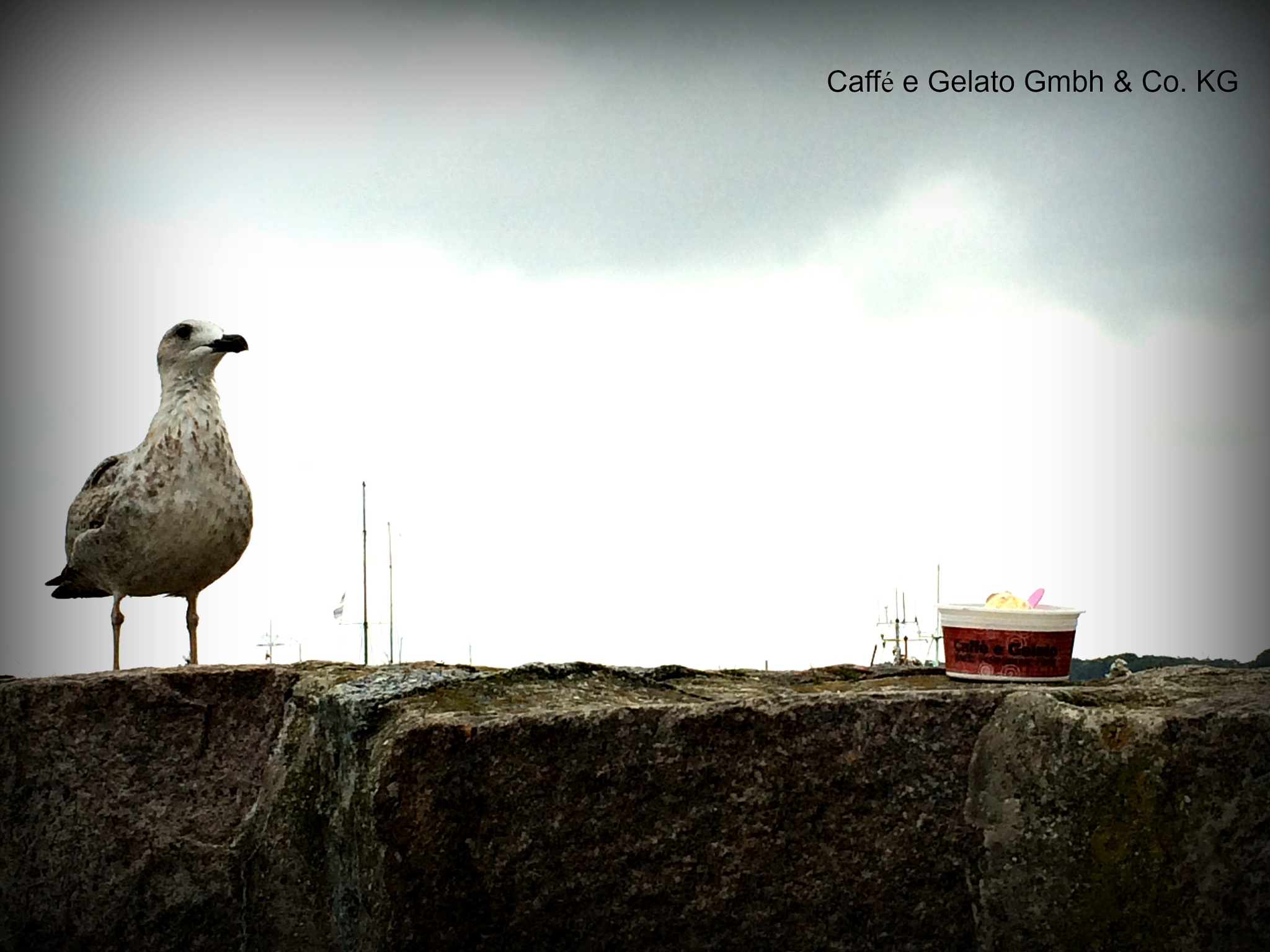 ice cream by Caffe E Gelato