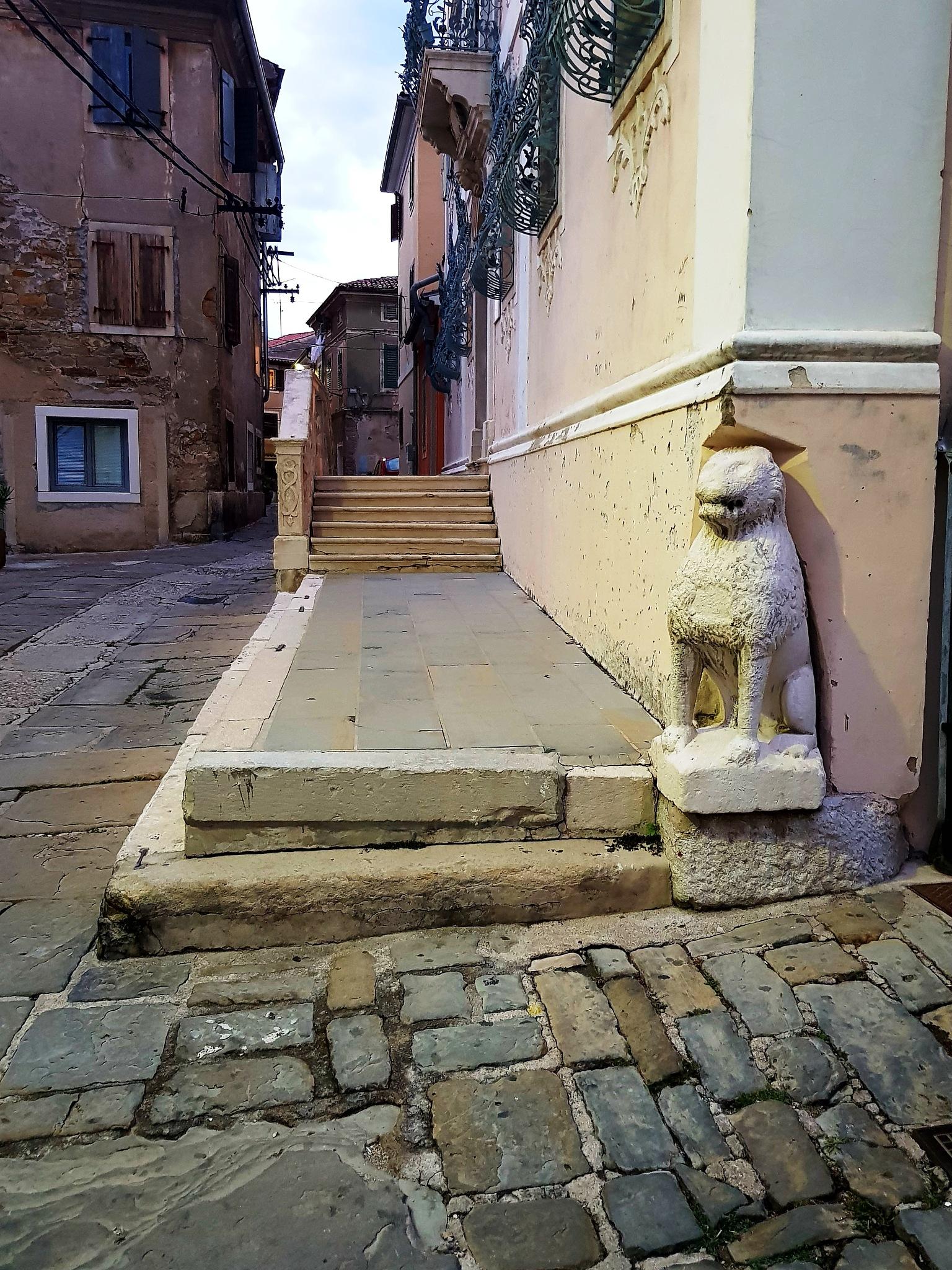 Photo in Architecture #izola #street #lion
