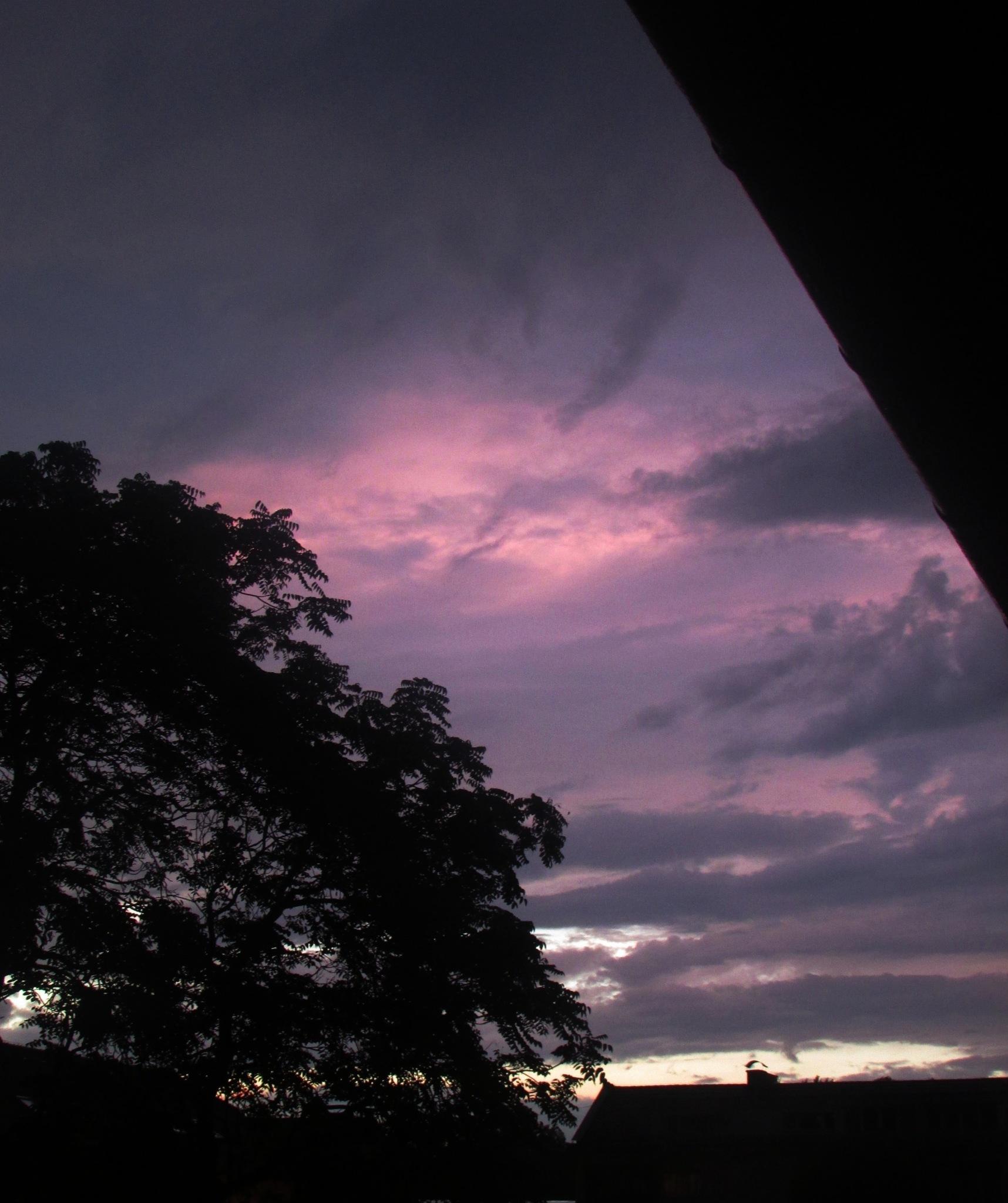 Purple sky_2 by Ayla Photography