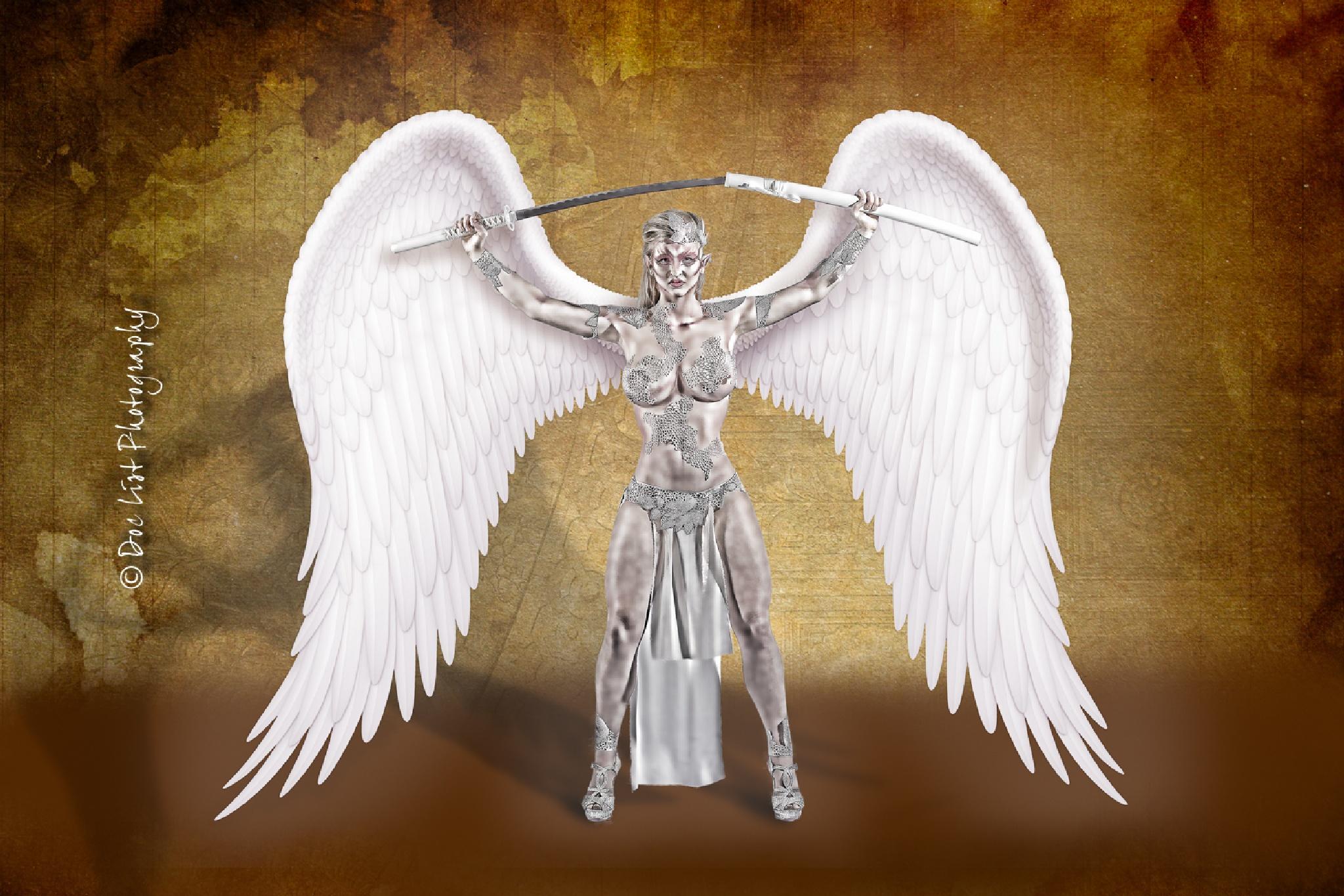 Warrior Elf Queen #1 by Doc List