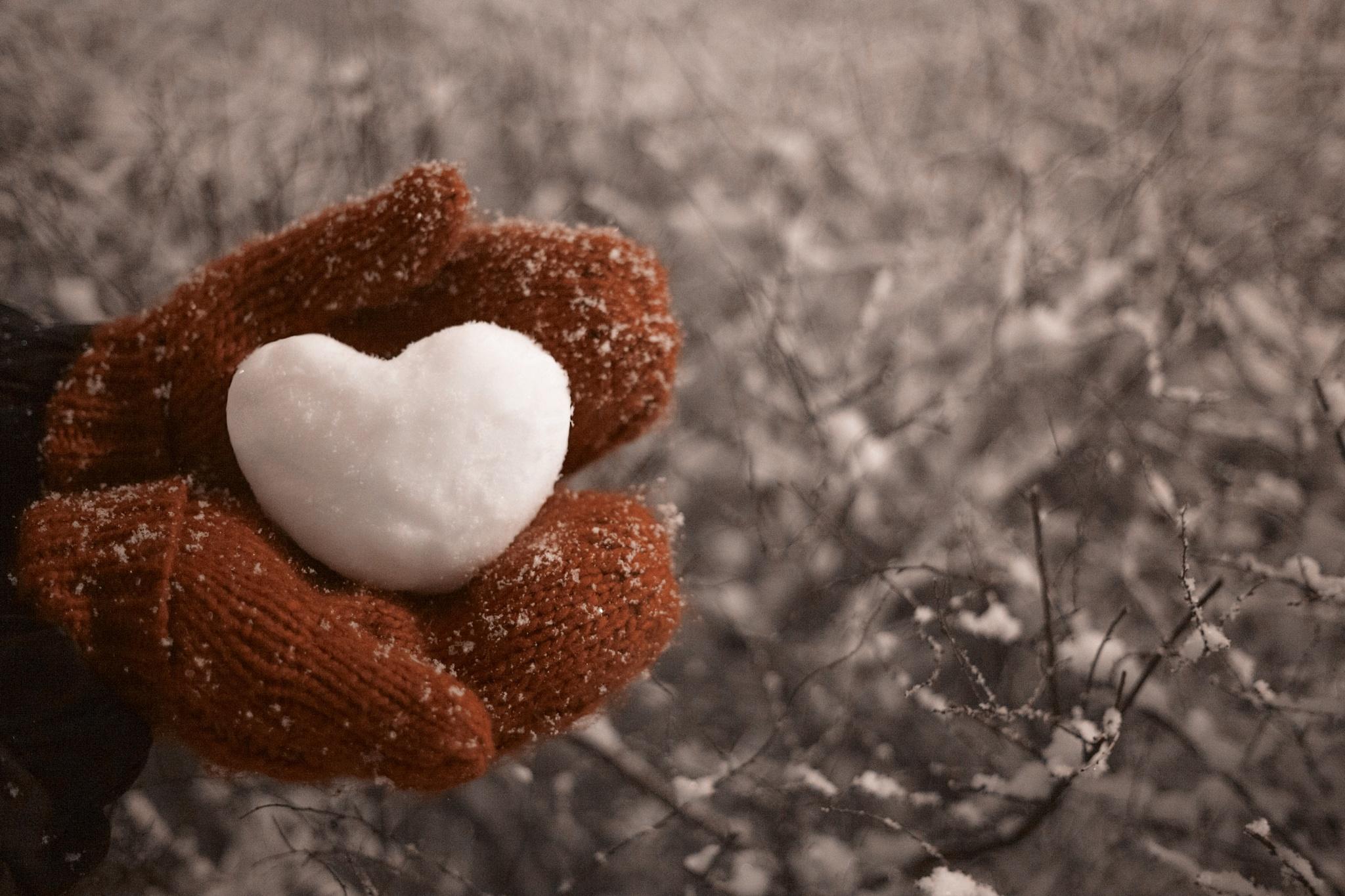love  by Nastia Kotomkina