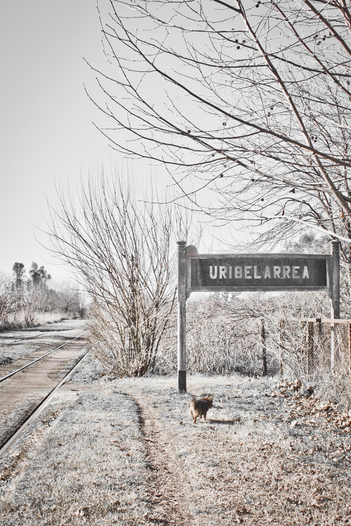 La estación by Marcedelrio