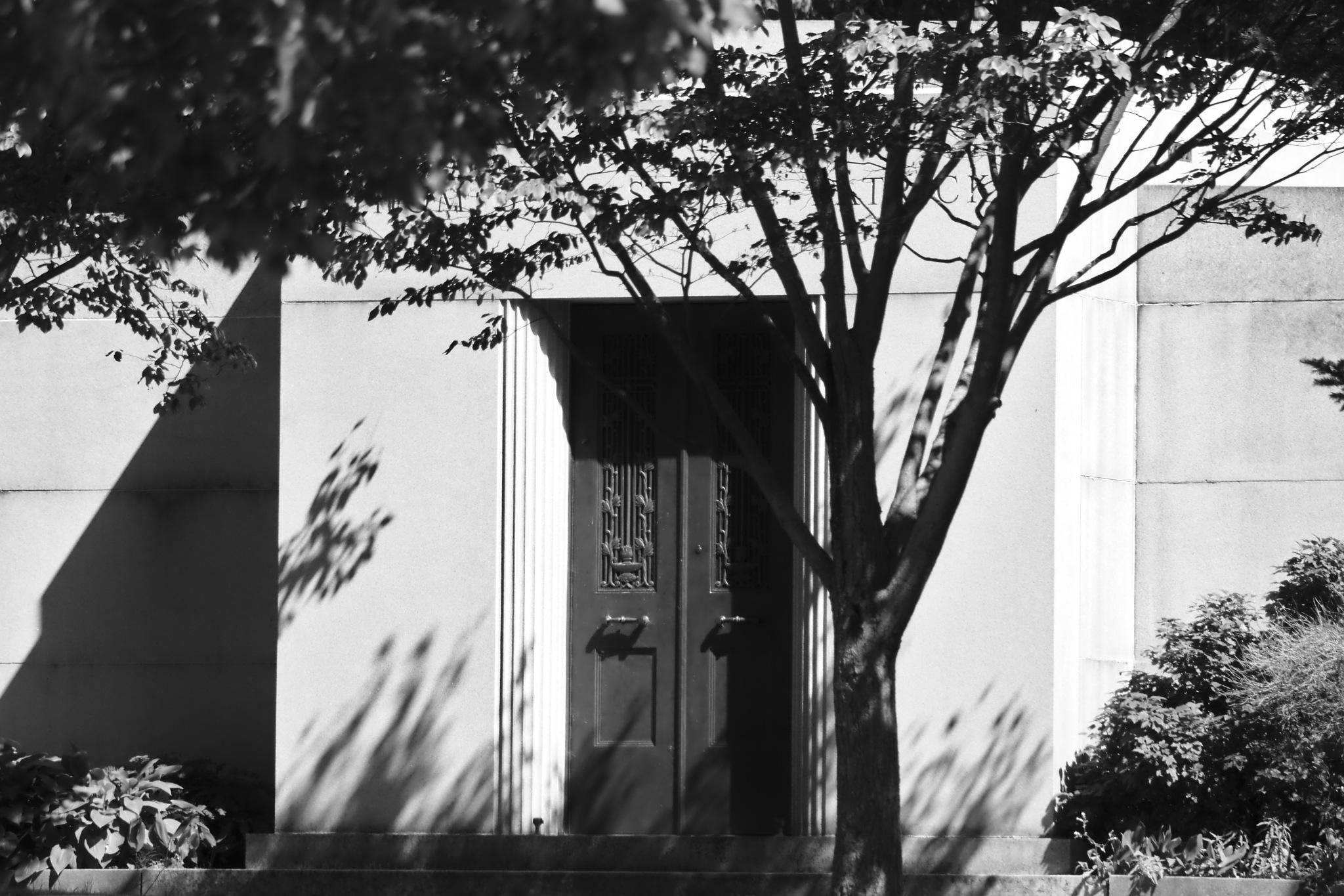 Door to mystery  by Scott