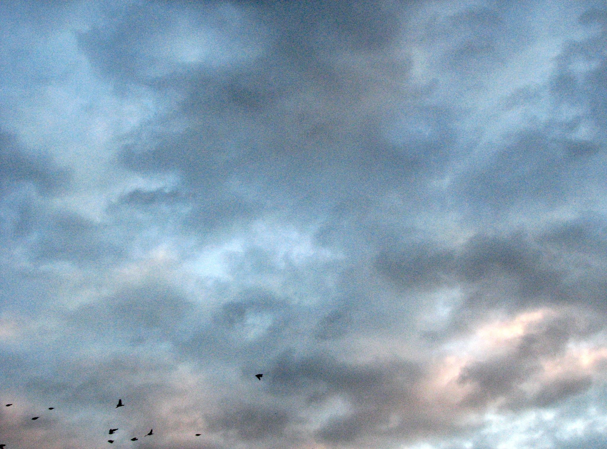 November sky 1 by natasakljukevic