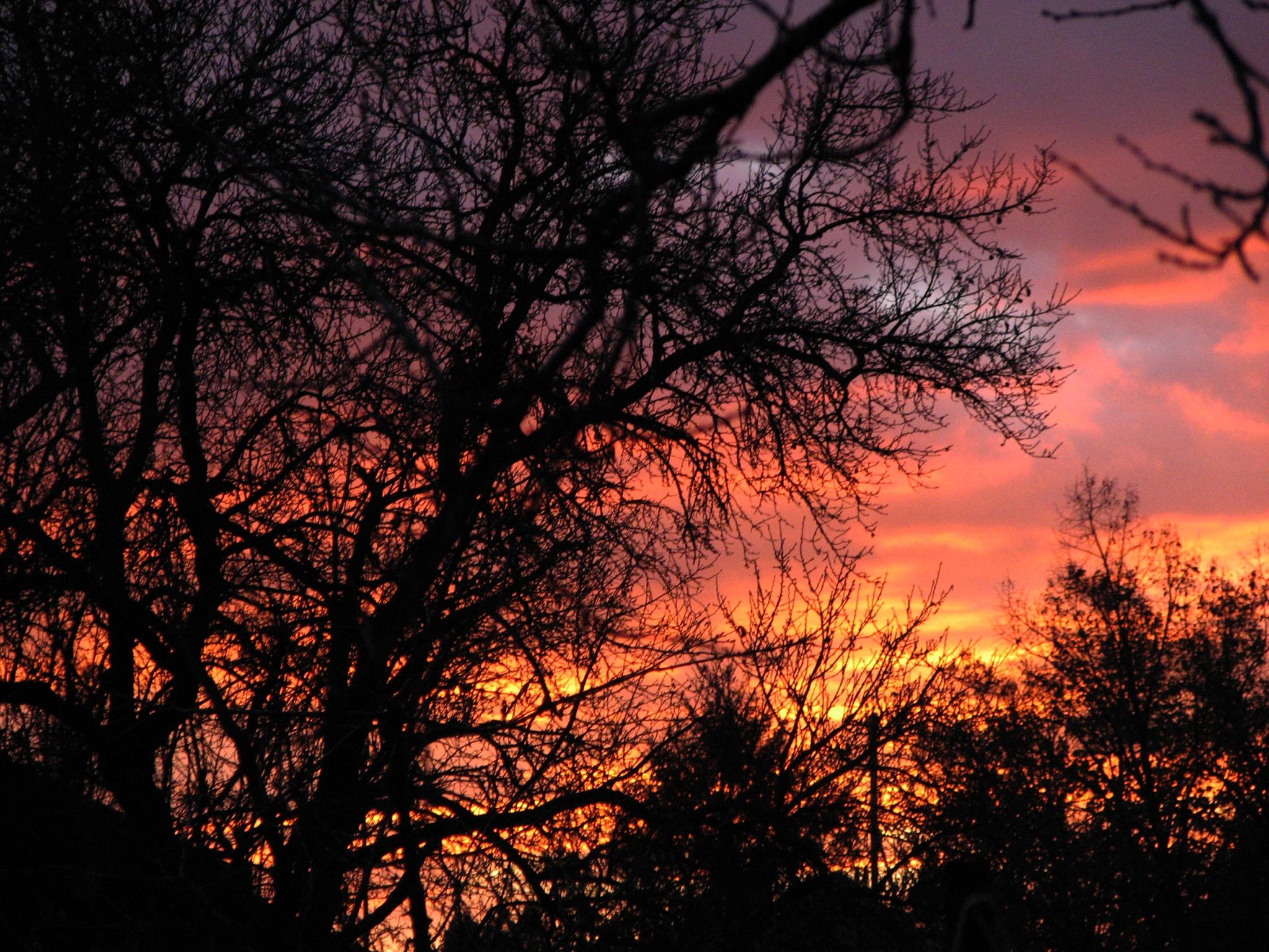 November sunset by natasakljukevic