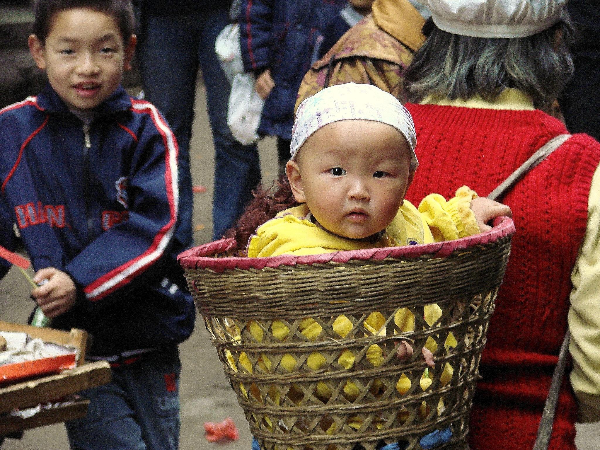 Baby in a Basket by GregKnudsen