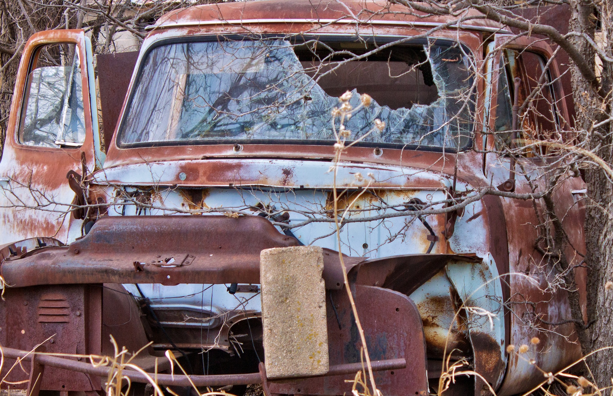 Rusted Out by kraganderson