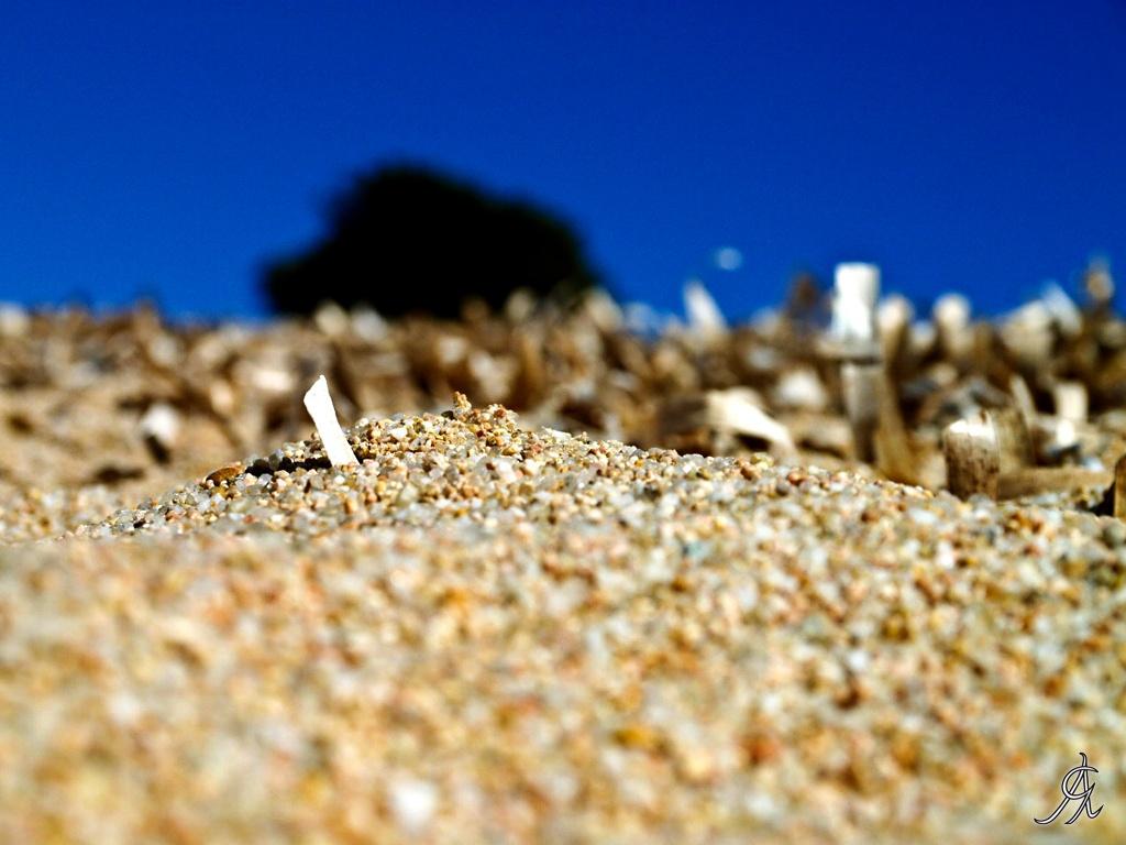 Grains of sand by Alessandro Giorgi Art Photography