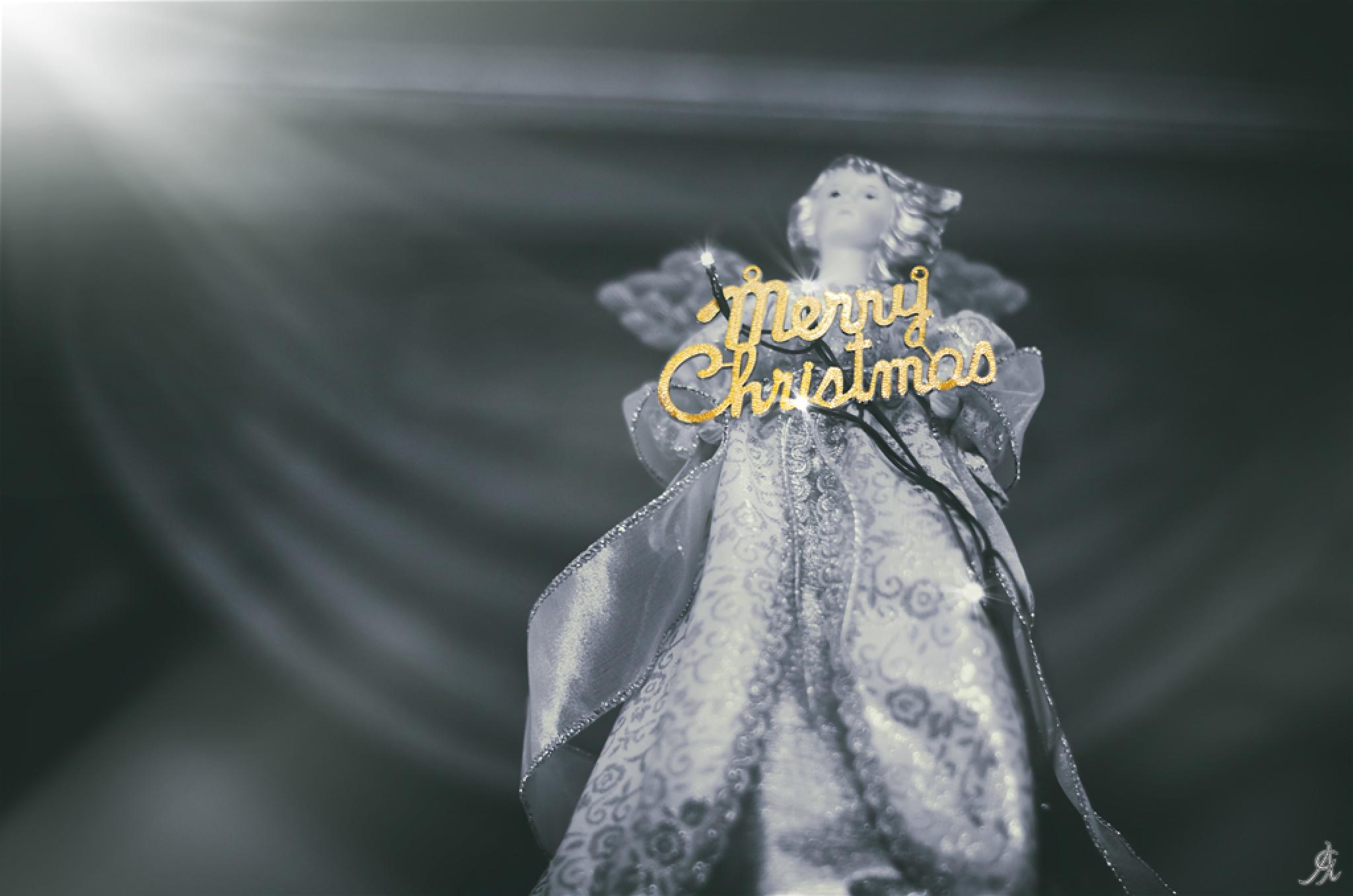 Merry Christmas (2) by Alessandro Giorgi Art Photography