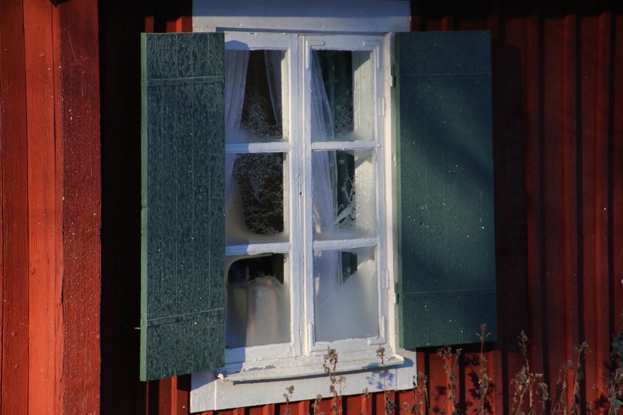Cold cottage by Mikael Ekström