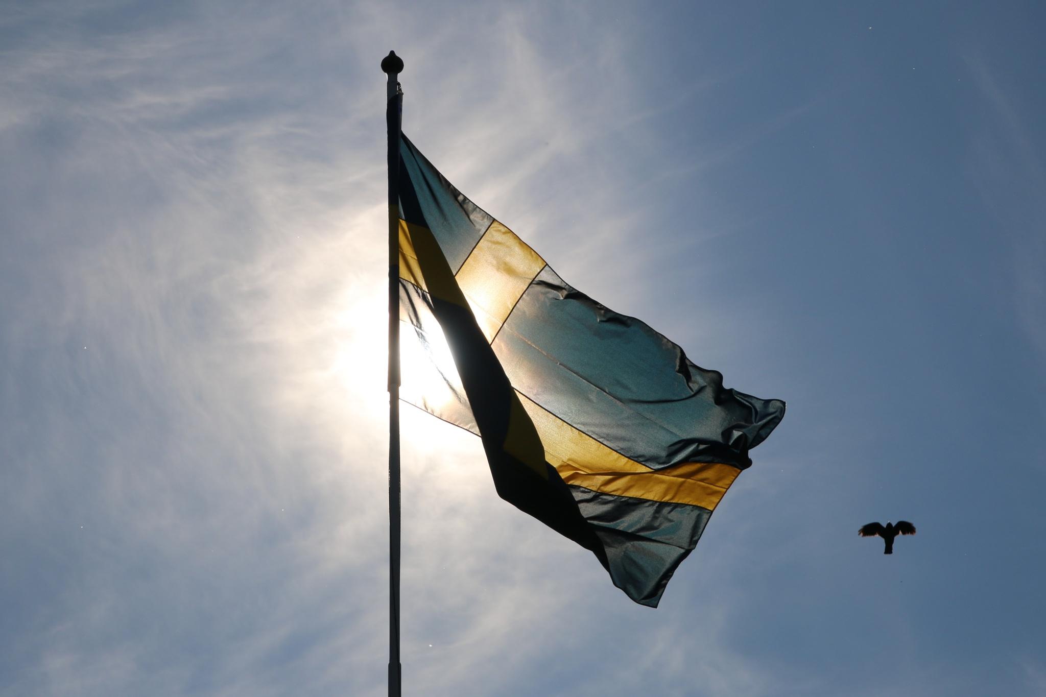 Photo in Landscape #sweden #flag #national day #småland #june