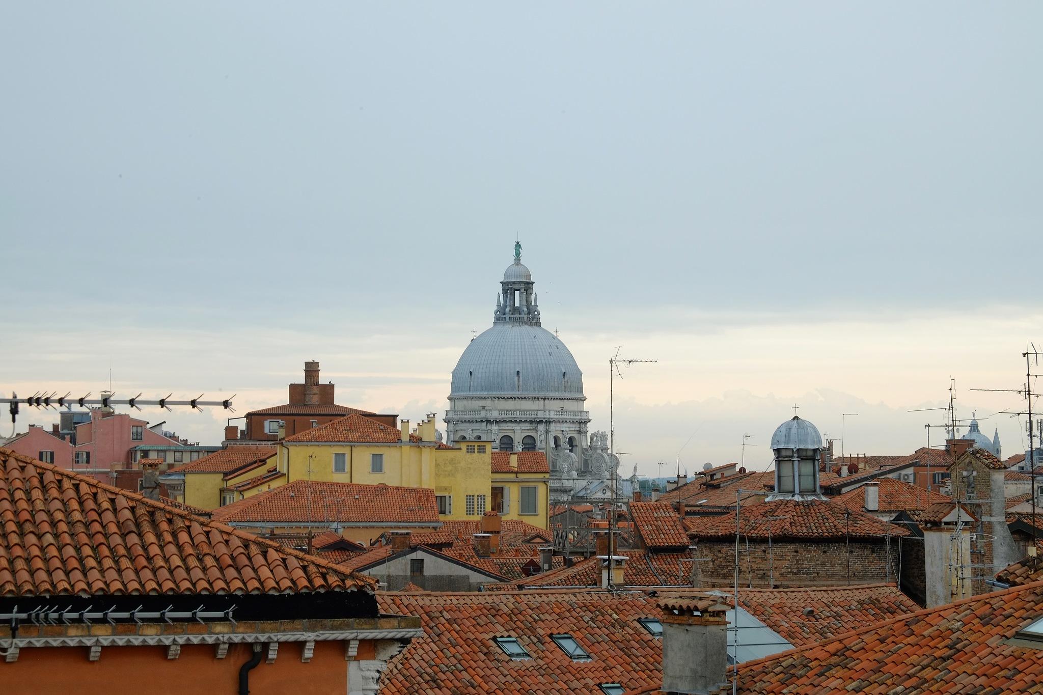 Church of Santa Maria della Salute, Venice by Pete Hussey