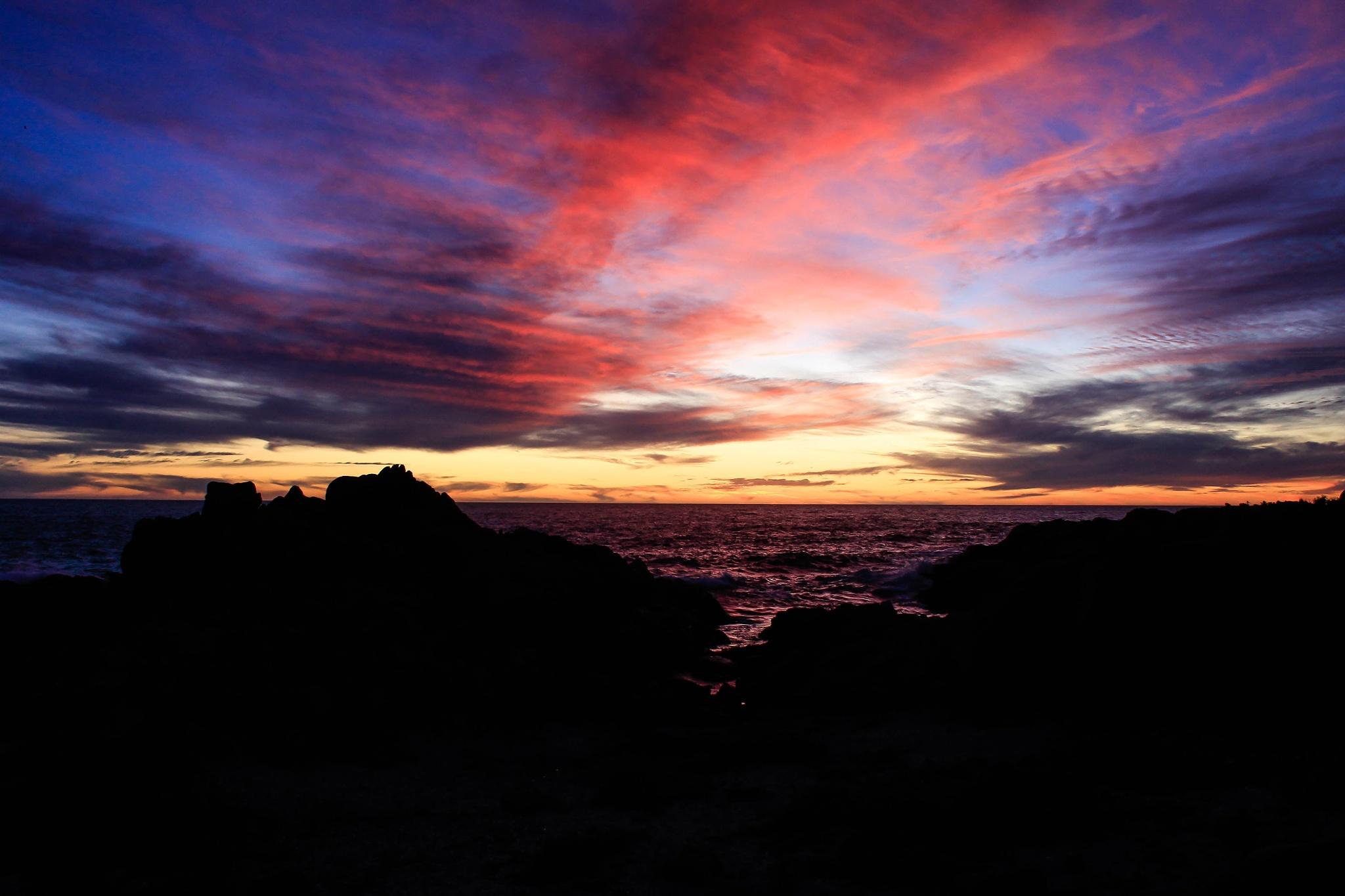 costa de pelancura , quinta region   chile  by Luis Ardiles Ibarra
