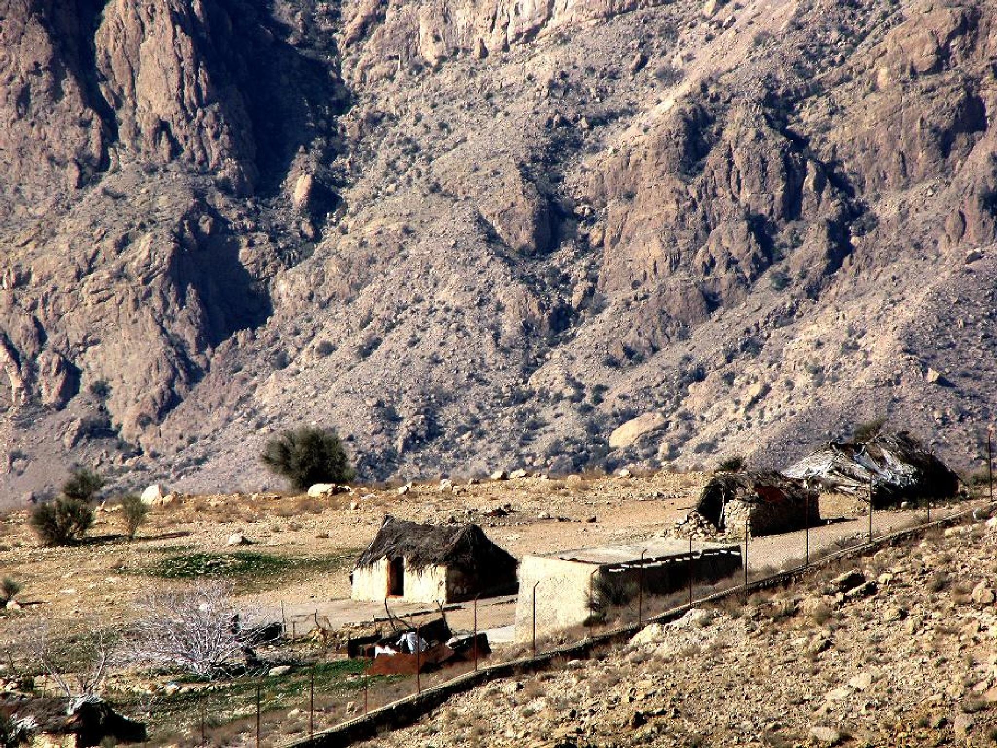 خانه کوهی  by omidshahinpoor
