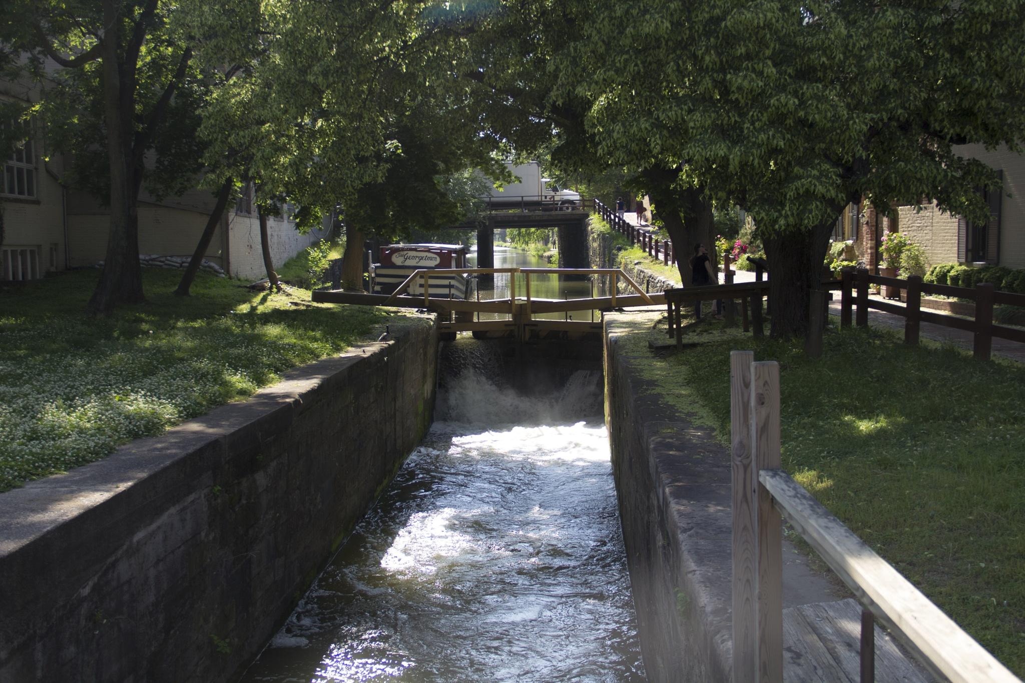 C&O Canal , Georgetown  by Daniel Buchbinder