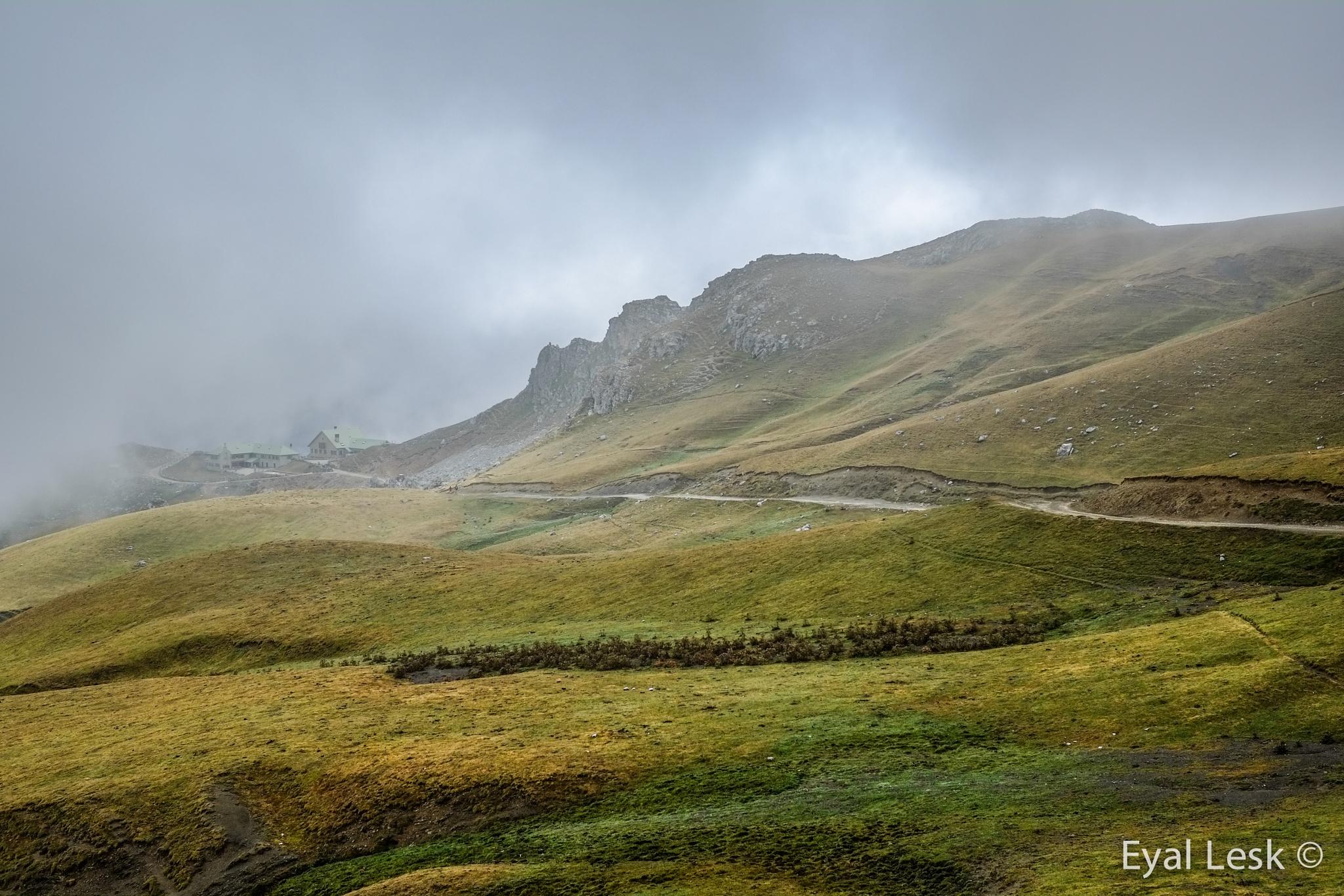 Fog by PhotoLesk