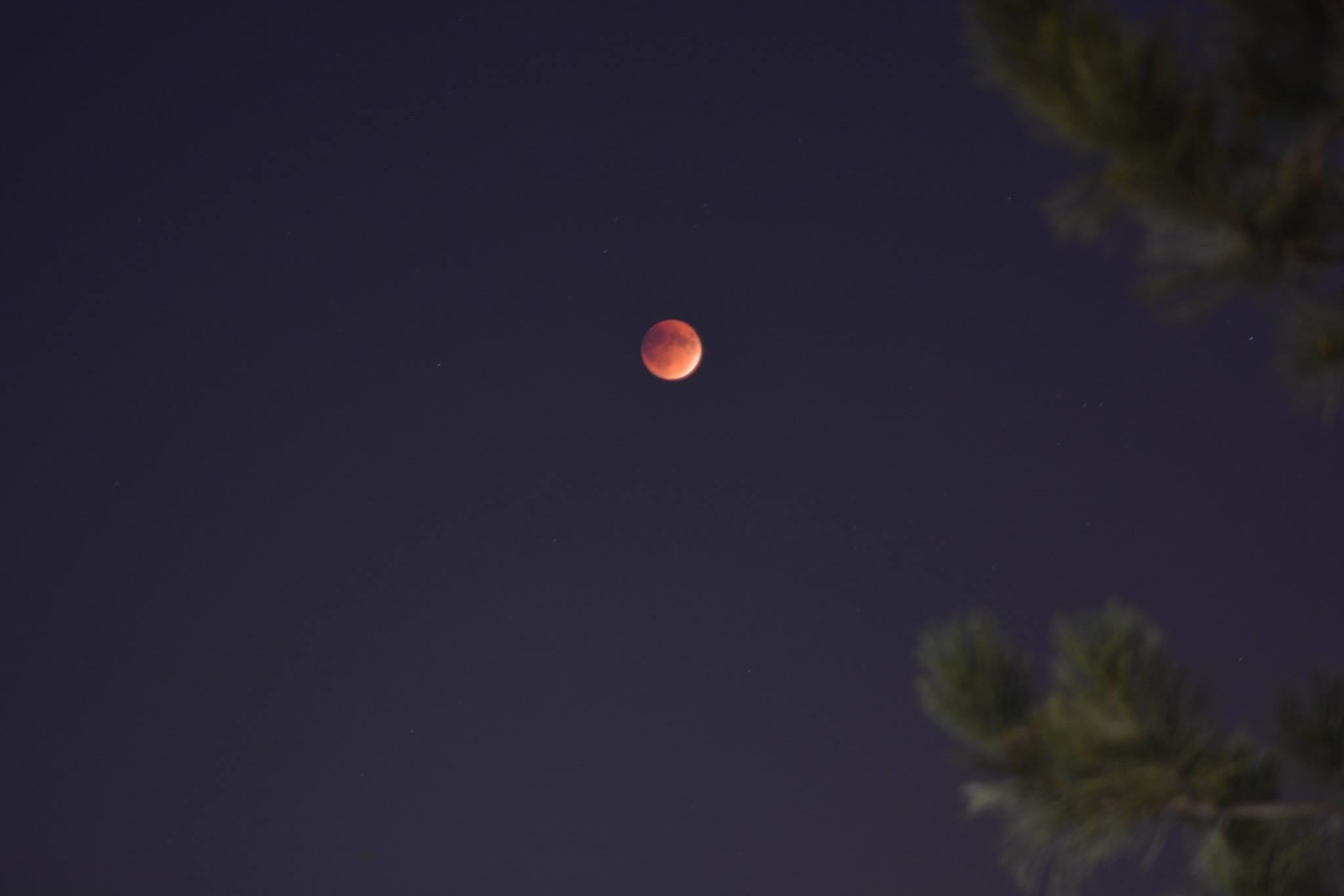 Blood Moon by Junaid Ahmed