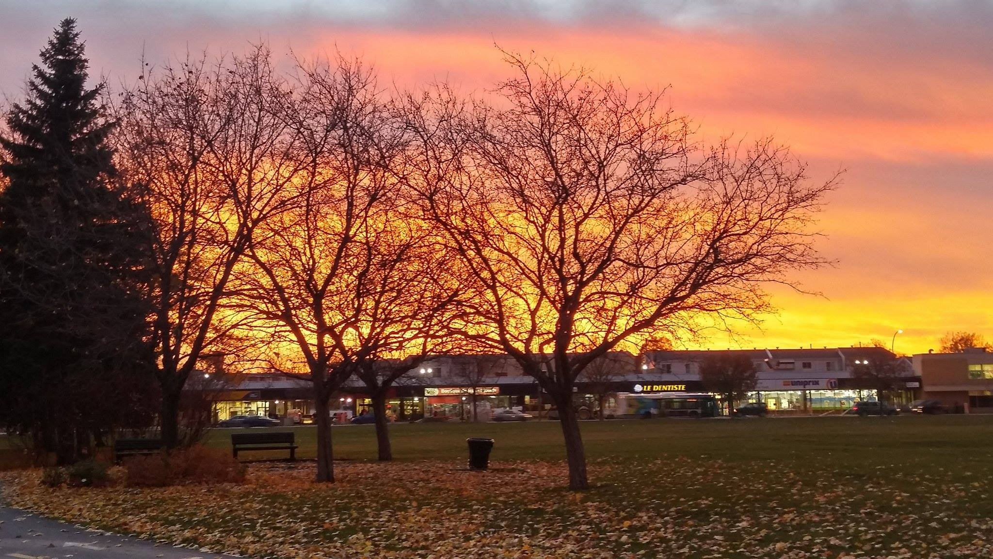 sun set.Bellerive Park by Nicole Bergeron