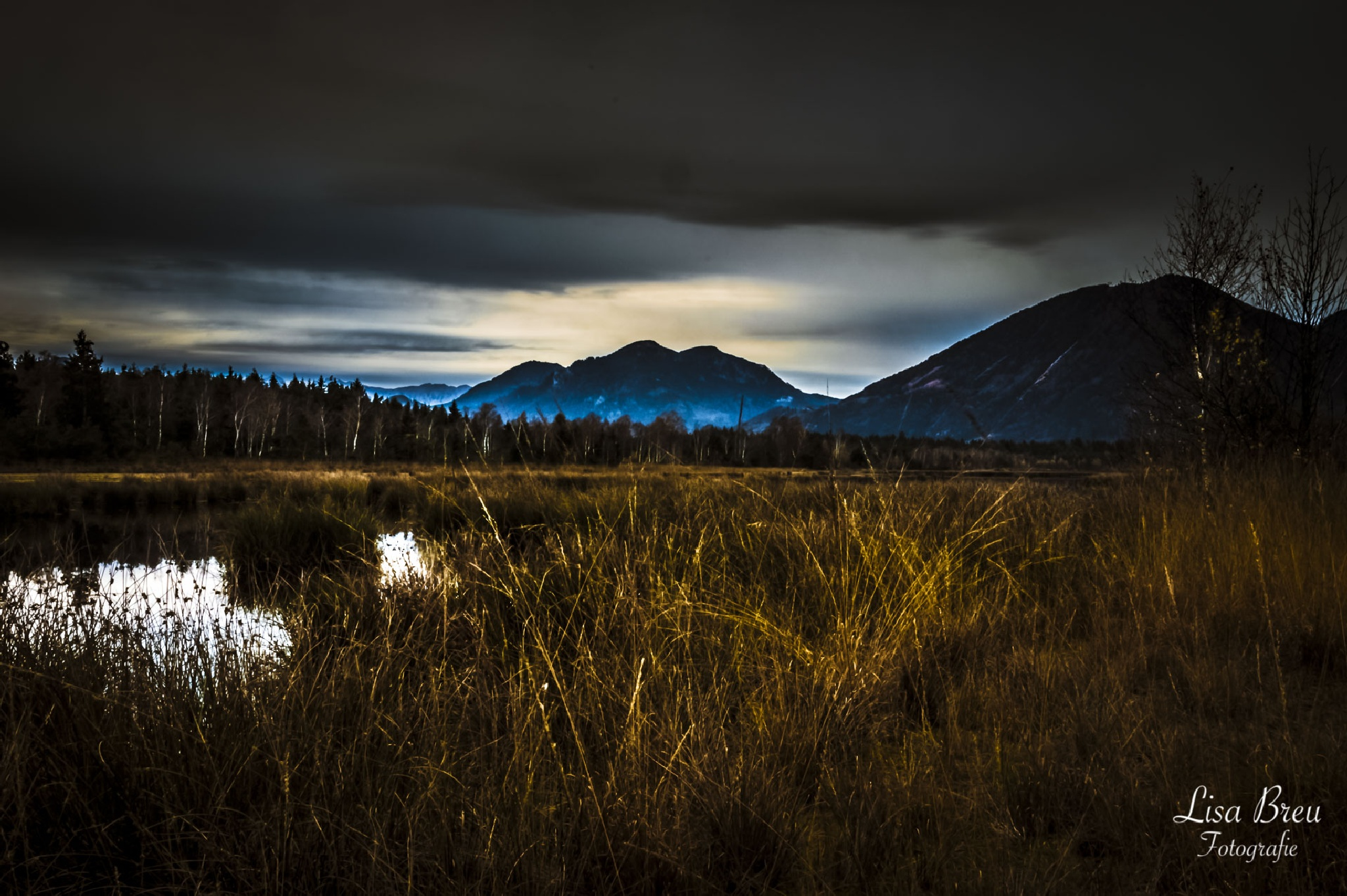 sunrise by LisaVoit