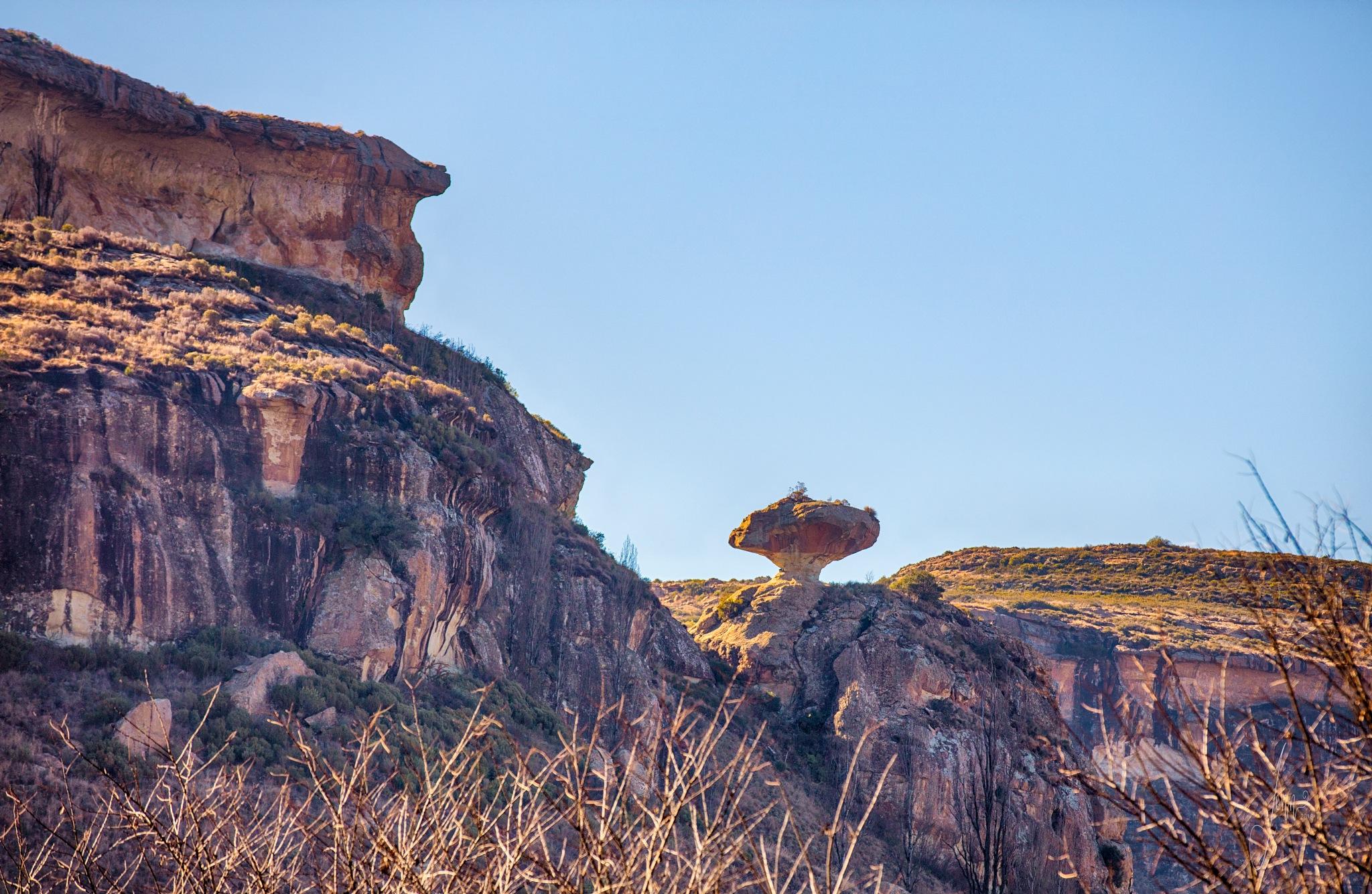 Mushroom Rock by Jennie