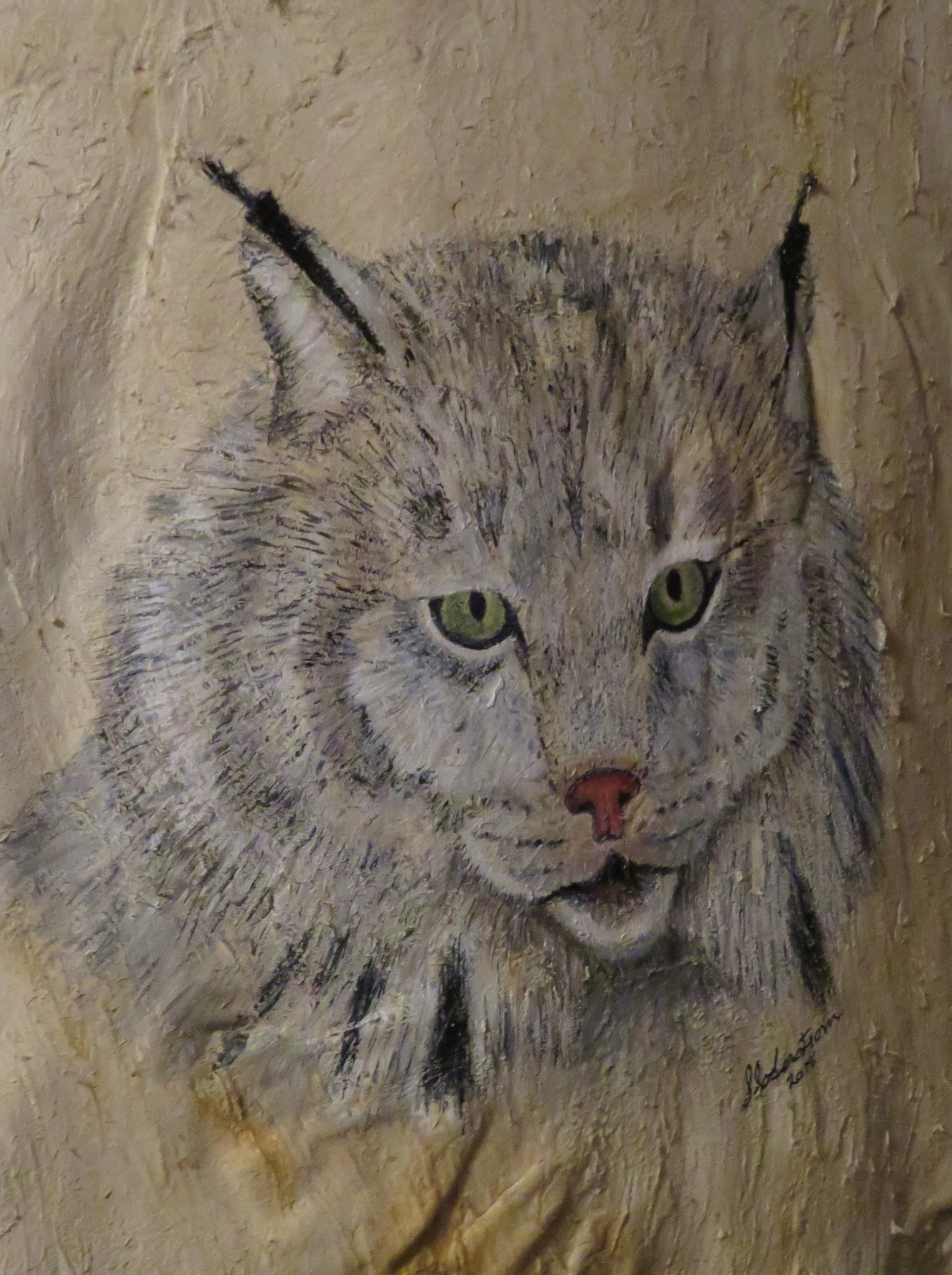 Lynx on beaver pelt by susan soderstrom