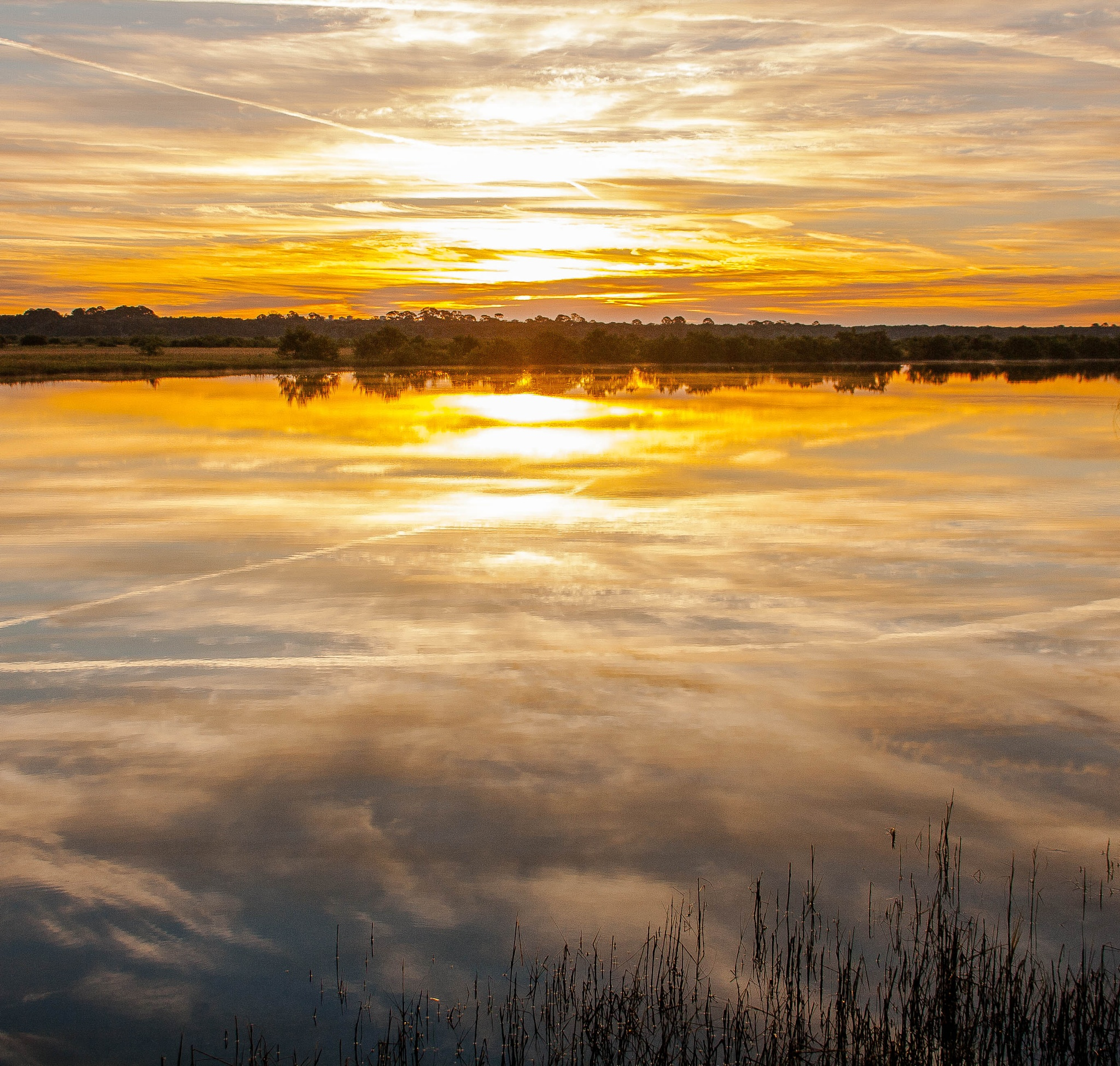 Sunrise Reflection by Peter Cavaliere
