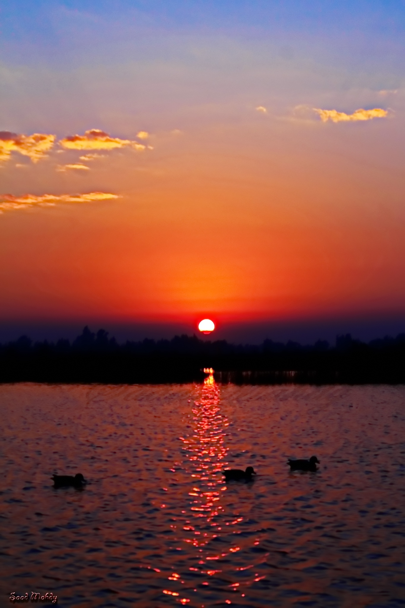 Sunrise in the lake by Saad Mahdy