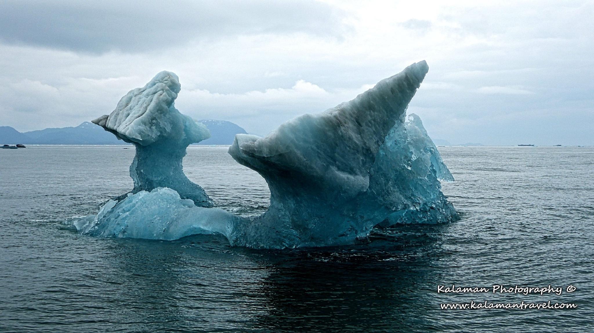 Ice by Kalaman Photography