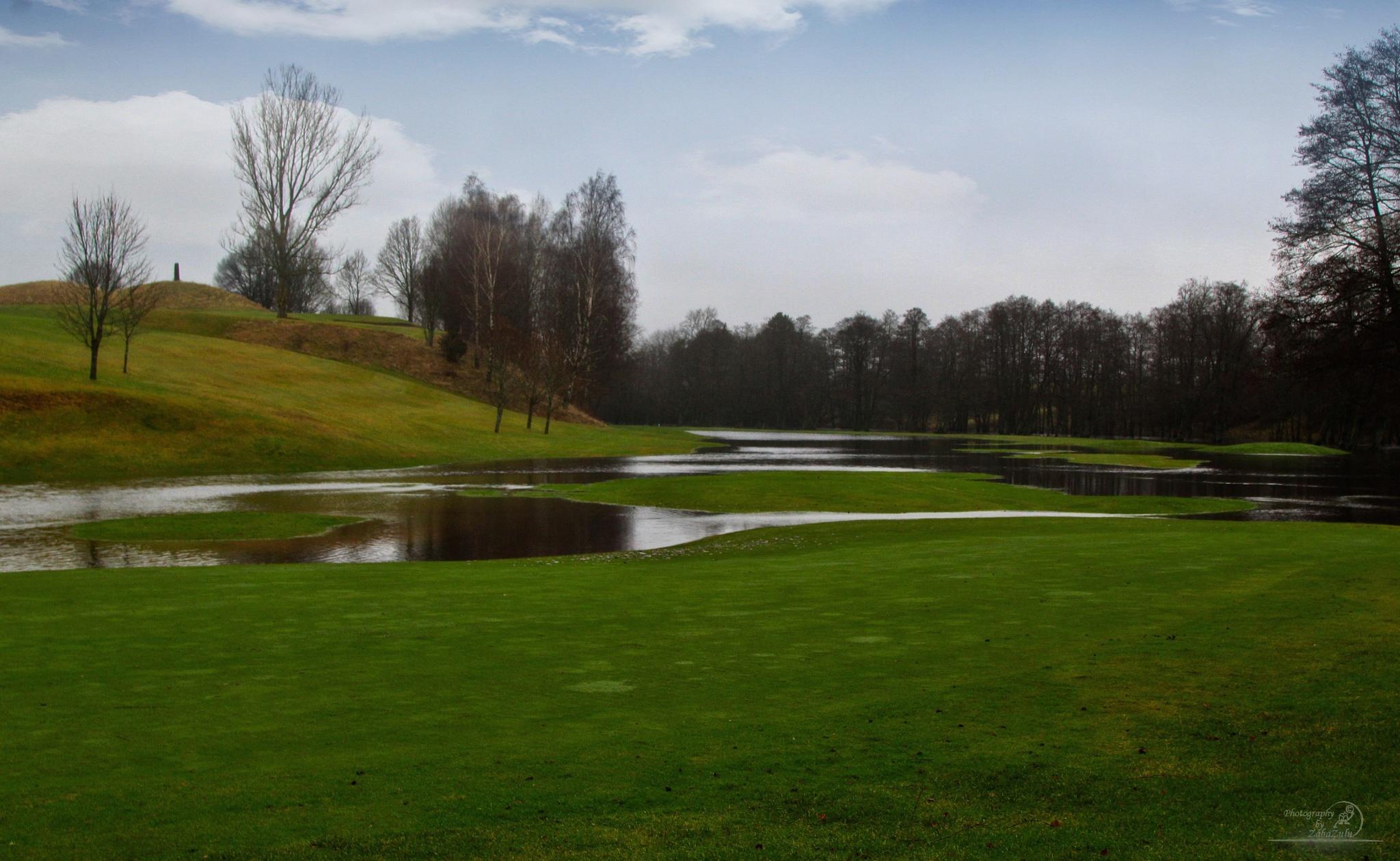 No golf today by zabazulu