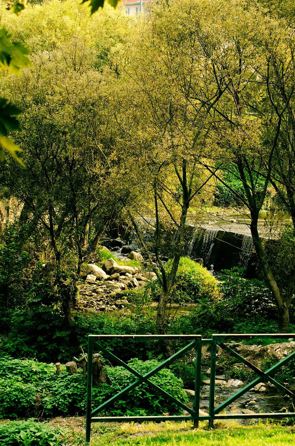 Greenery Abdal köprüsü  by Deniz Aybar